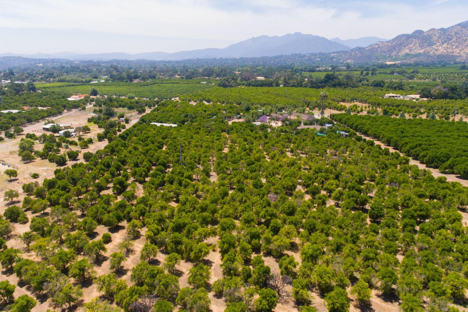 Single Family Homes for Active at Dreaming of owning a ranch in Ojai's East End? 544 Gorham Road Ojai, California 83023 United States
