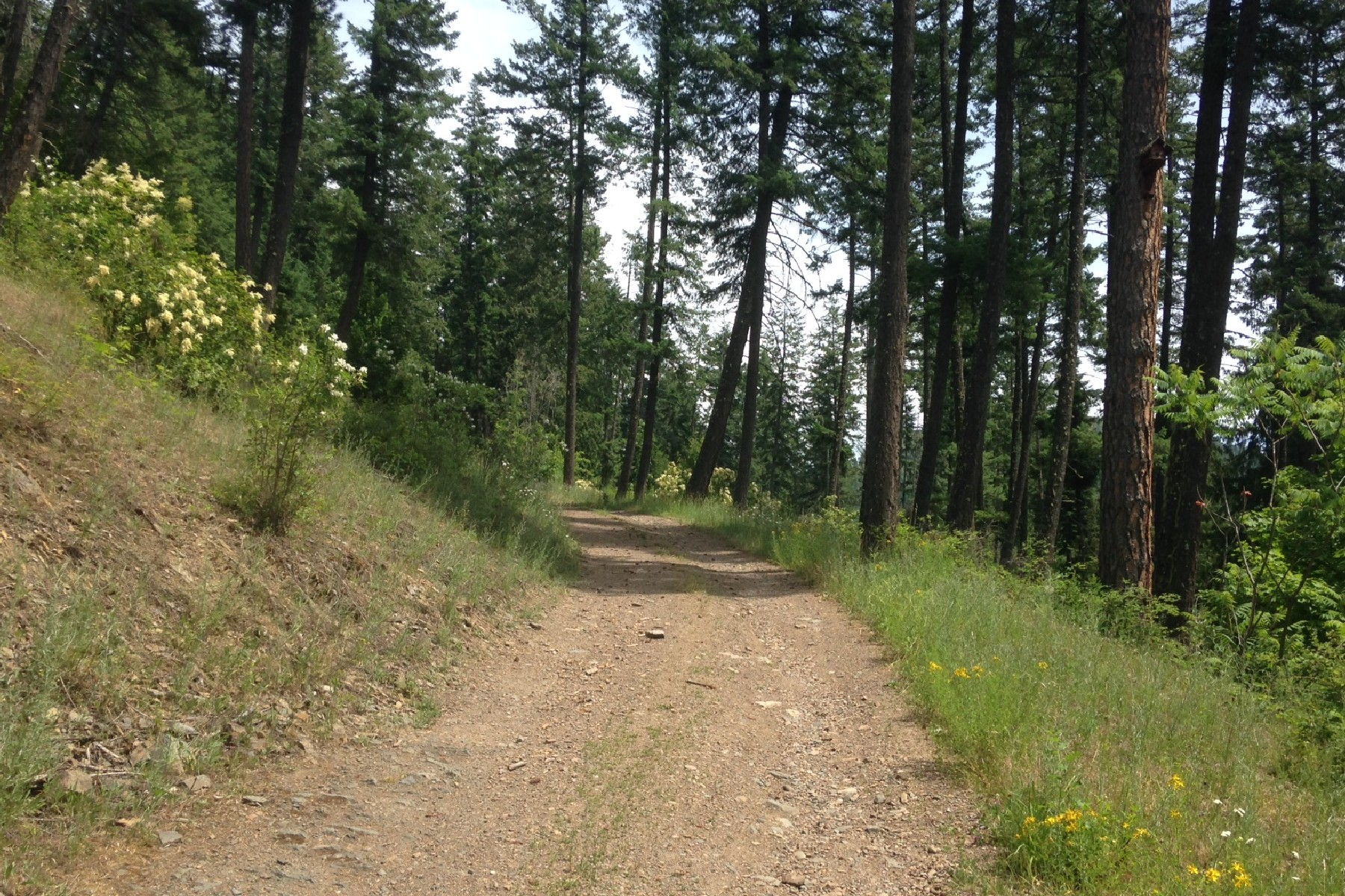Additional photo for property listing at Sweeping Views of Clark Fork River 52331 Hwy 200 Clark Fork, Idaho 83811 United States