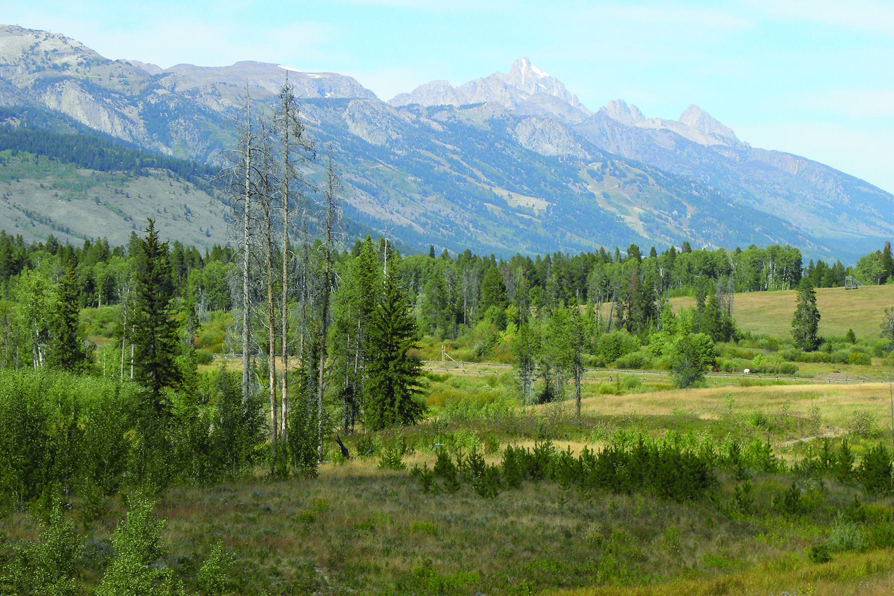 Land for Sale at Premier Ranch Lot in Crescent H Ranch 5990 West Salmonfly Dr West Bank South, Wyoming, 83014 Jackson Hole, United States