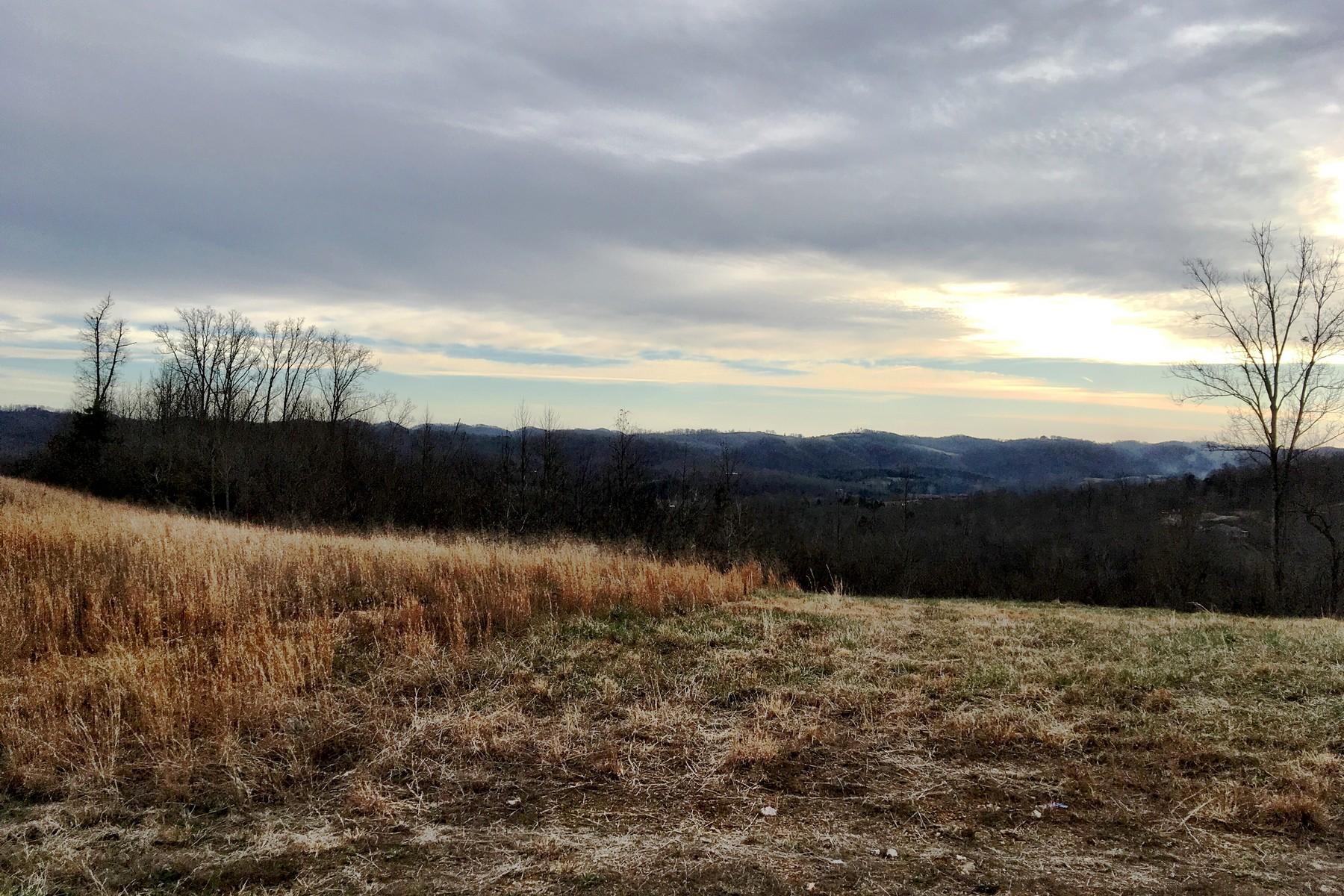 أراضي للـ Sale في Panoramic Views Panoramic Drive Lot #24, Maynardville, Tennessee, 37807 United States