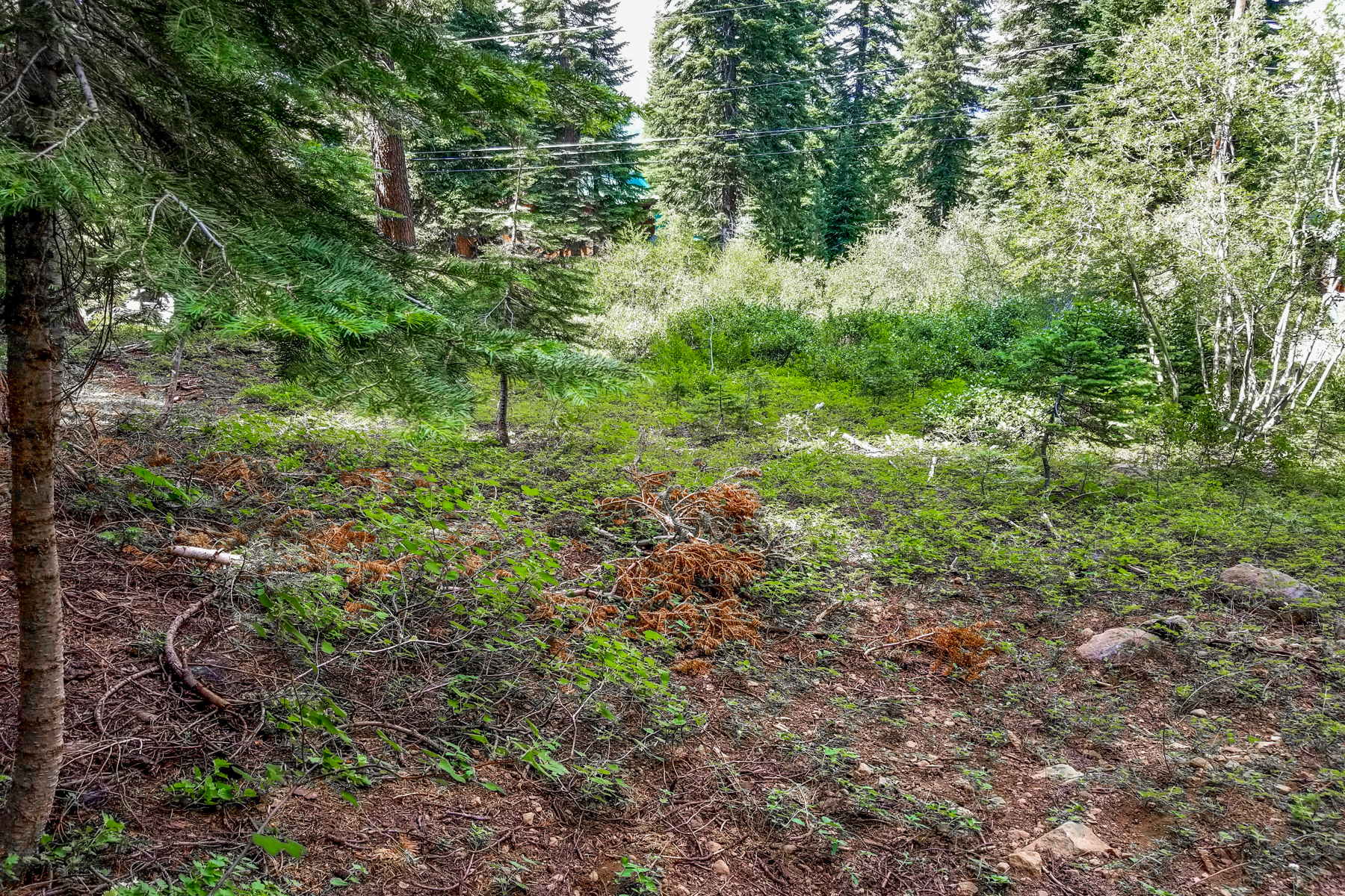 Additional photo for property listing at 14225 Herringbone Way, Truckee, CA 14225 Herringbone Way Truckee, California 96161 United States
