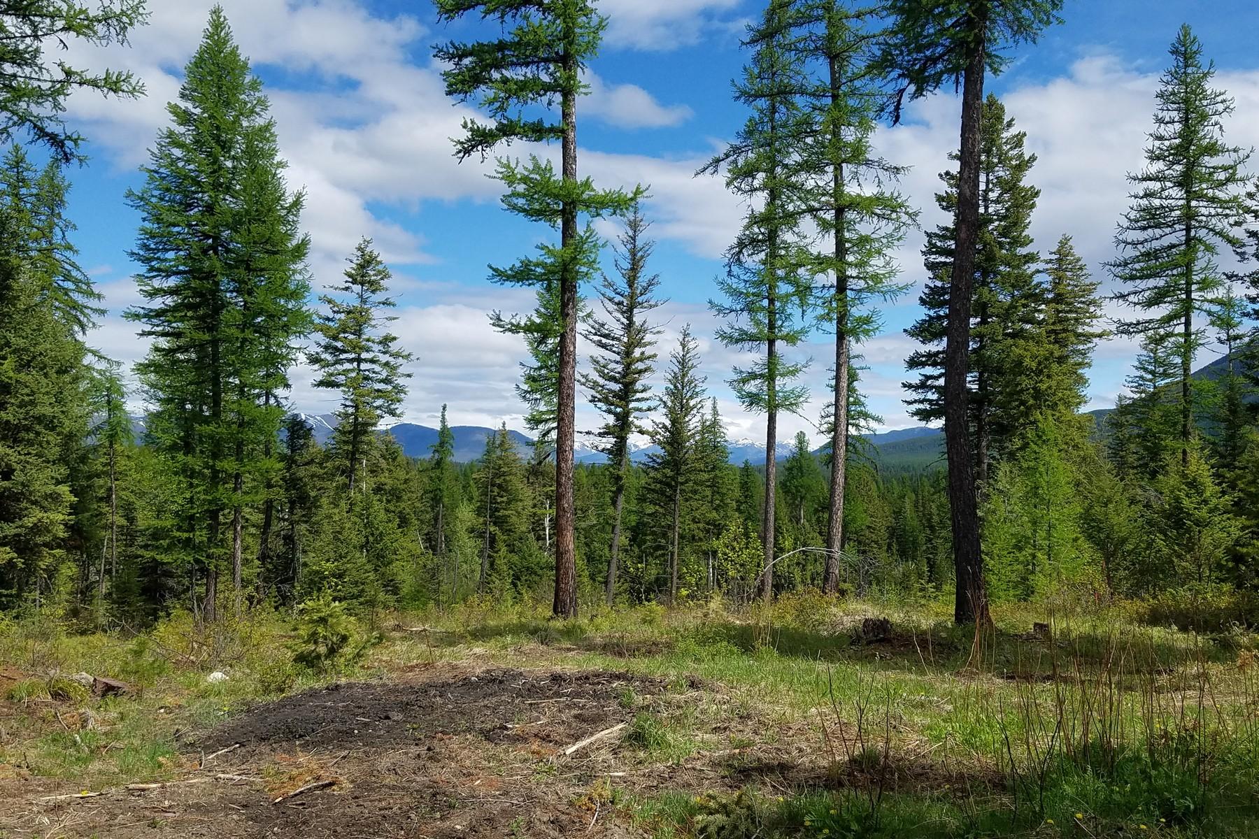 Land für Verkauf beim Martin City, Montana 59926 Vereinigte Staaten