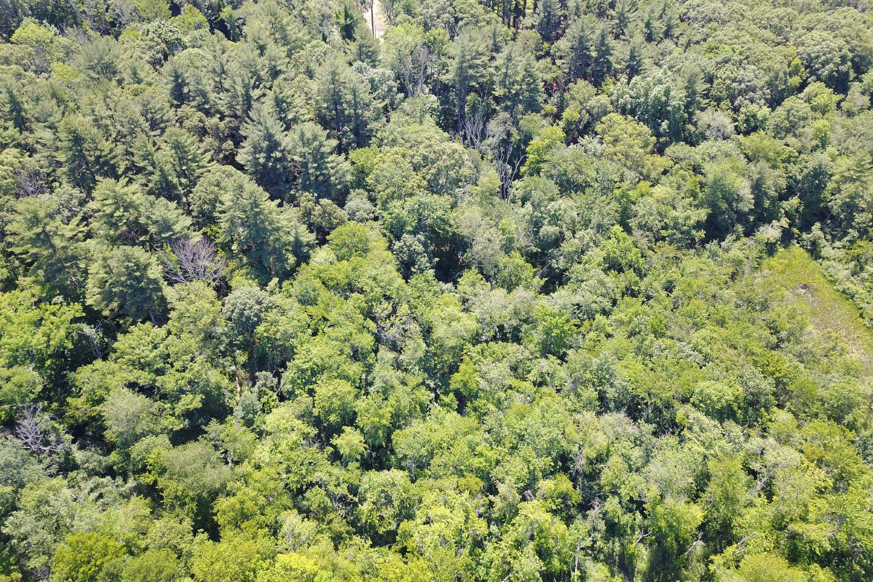 Land for Sale at 0 Old Winter St Lincoln, Massachusetts 01773 United States
