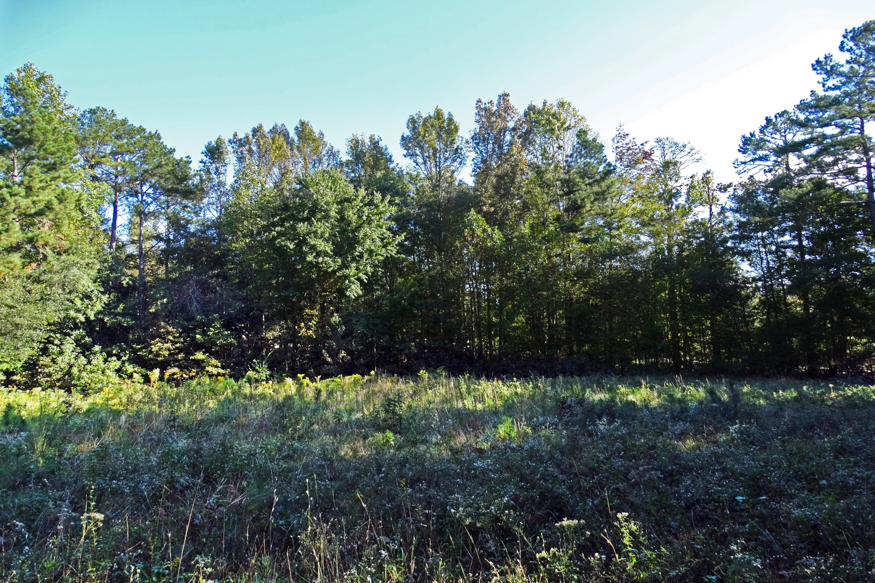 Land for Sale at 2.8+/- Acre Prime Lot Ready To Build 0 Gaydon Road Lot No. 5 Powder Springs, Georgia 30127 United States