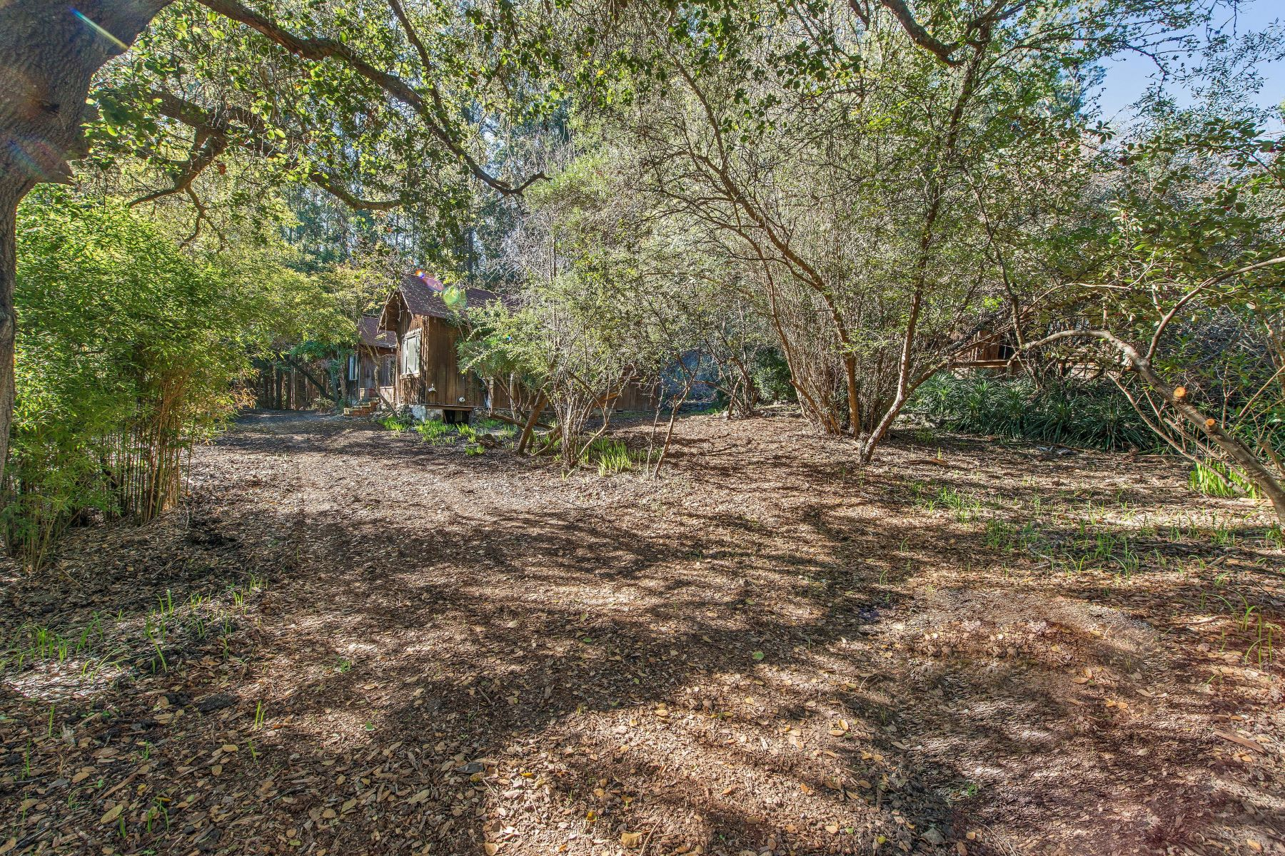 Additional photo for property listing at Your Piece of Paradise 4576 Paradise Drive Tiburon, California 94920 United States