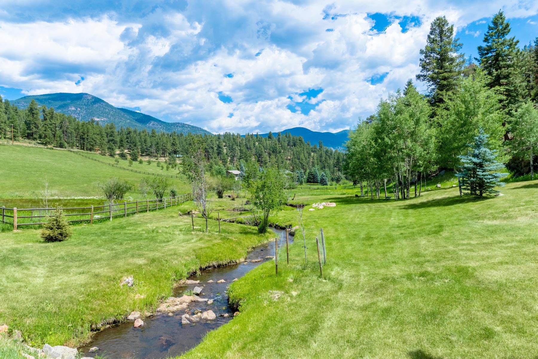 Maison unifamiliale pour l Vente à Whispering Creek Estate 924 Yankee Creek Road Evergreen, Colorado, 80439 États-Unis