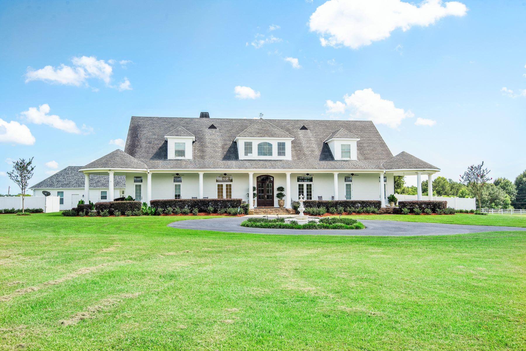 Single Family Homes pour l Vente à 28380 Highway 435, Abita Springs 28380 Hwy 435, Abita Springs, Louisiane 70420 États-Unis