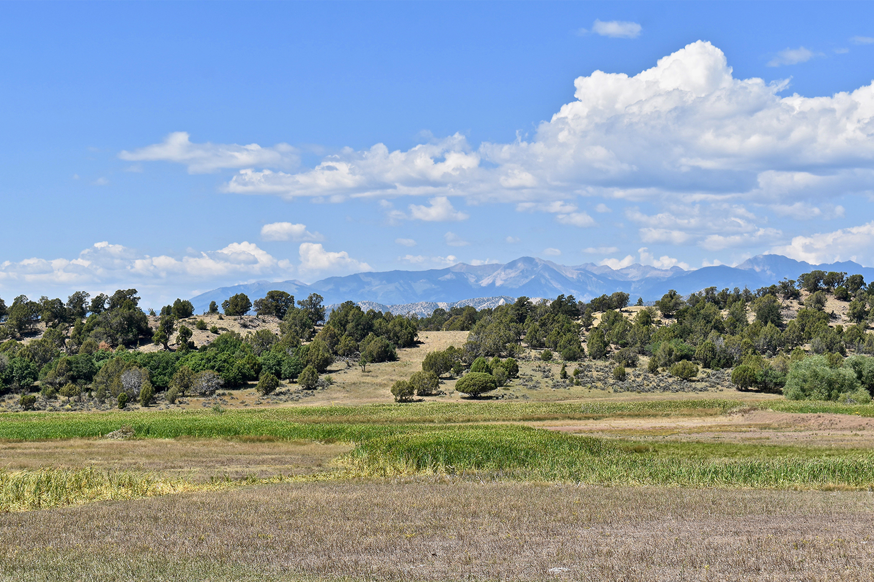 Land for Sale at El Pasadizo Ranch 2645 CR 510 Durango, Colorado 81303 United States