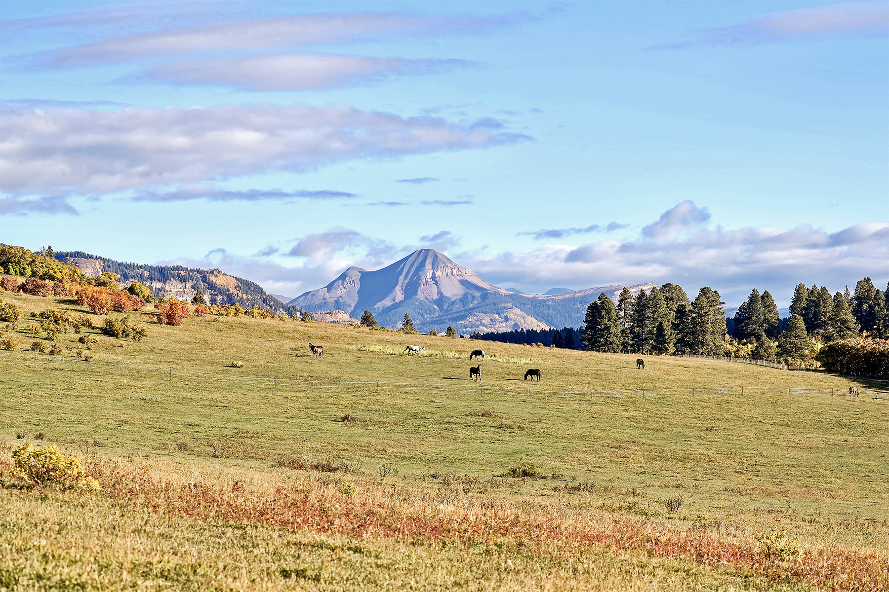 토지 용 매매 에 Montagna I TBD N US Hwy 550 Montagna I Durango, 콜로라도, 81301 미국