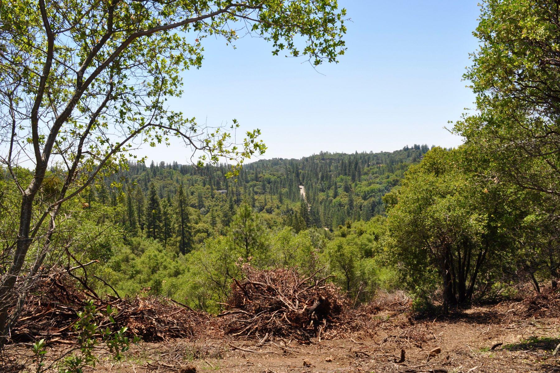 Terreno por un Venta en 14190 Shake Ridge Road Sutter Creek, California 95685 Estados Unidos