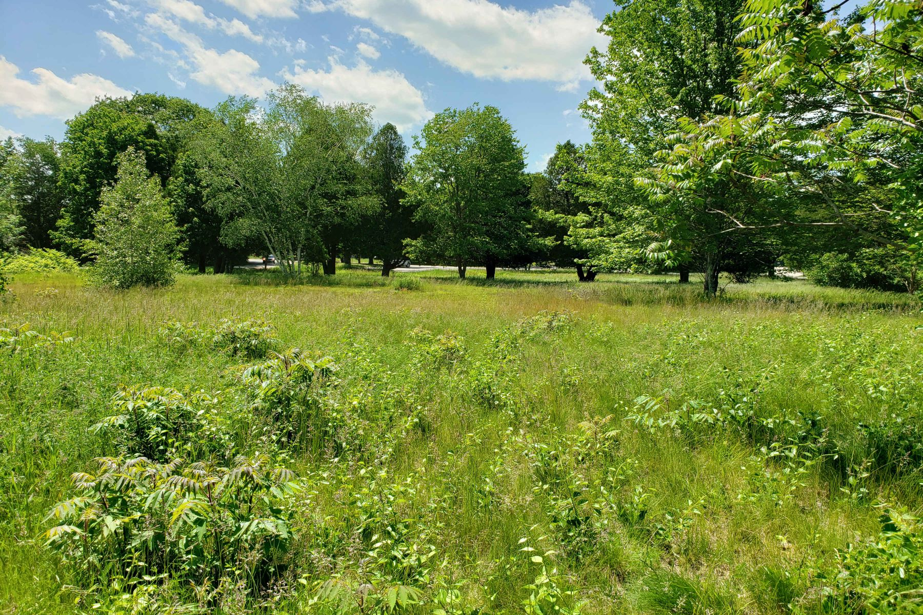 Land for Sale at Residential/Commercial Building Lot in Heart of Wells Business District 2229 Post Road, Wells, Maine 04090 United States