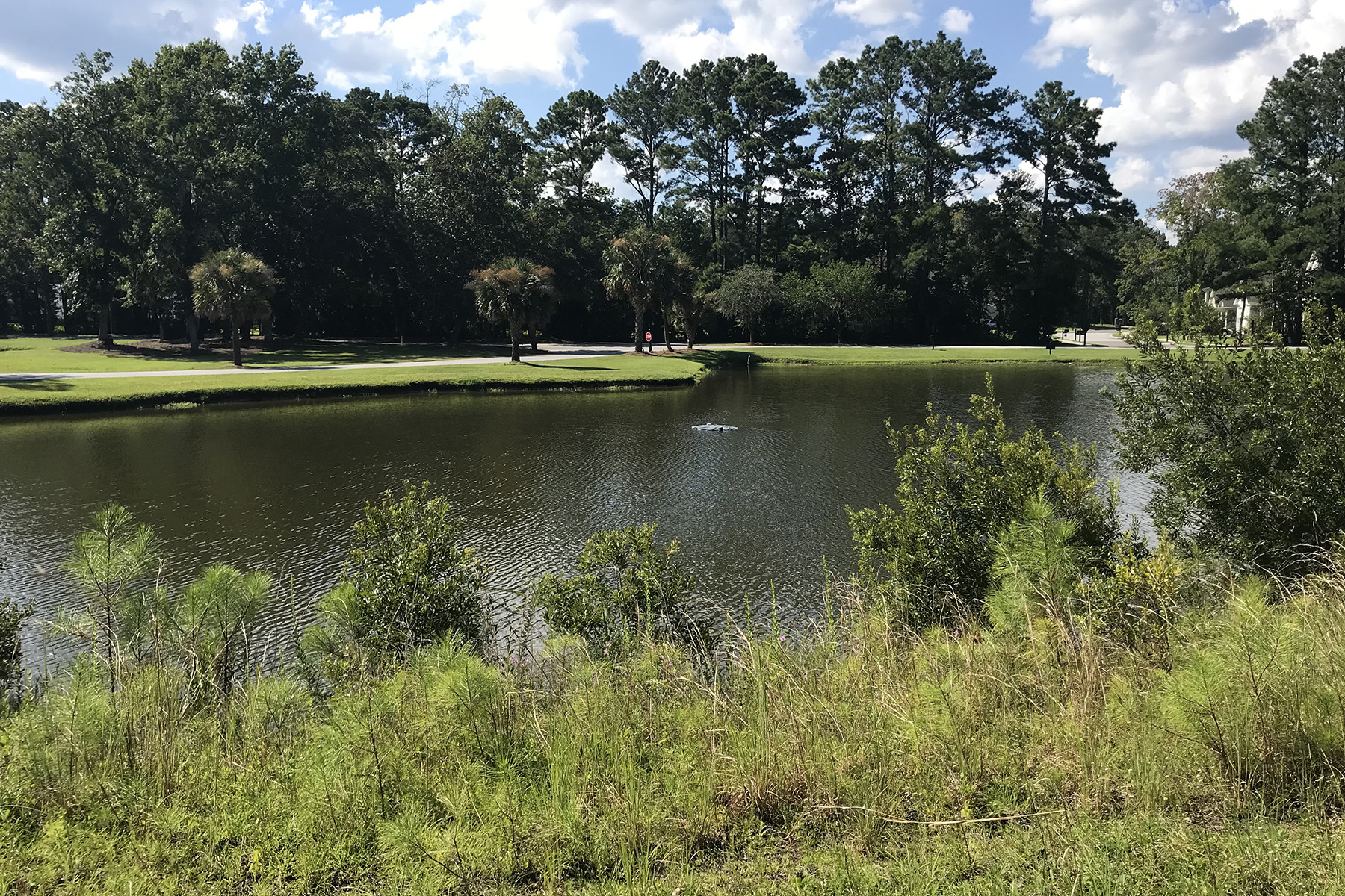 Land for Active at 4795 Stono Links Drive Hollywood, South Carolina 29449 United States