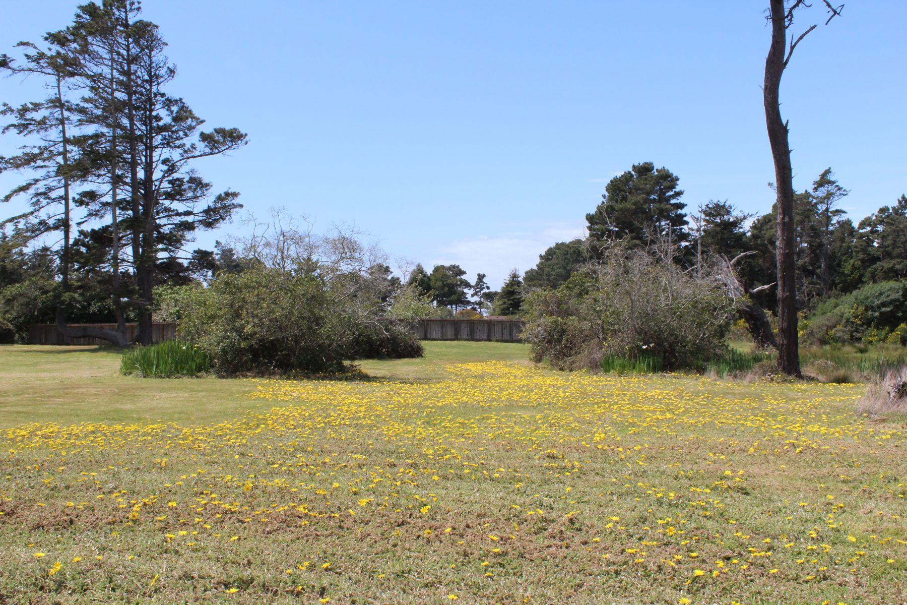 Additional photo for property listing at Coastal Gem 18312 N. Highway One Fort Bragg, 加利福尼亚州 95437 美国