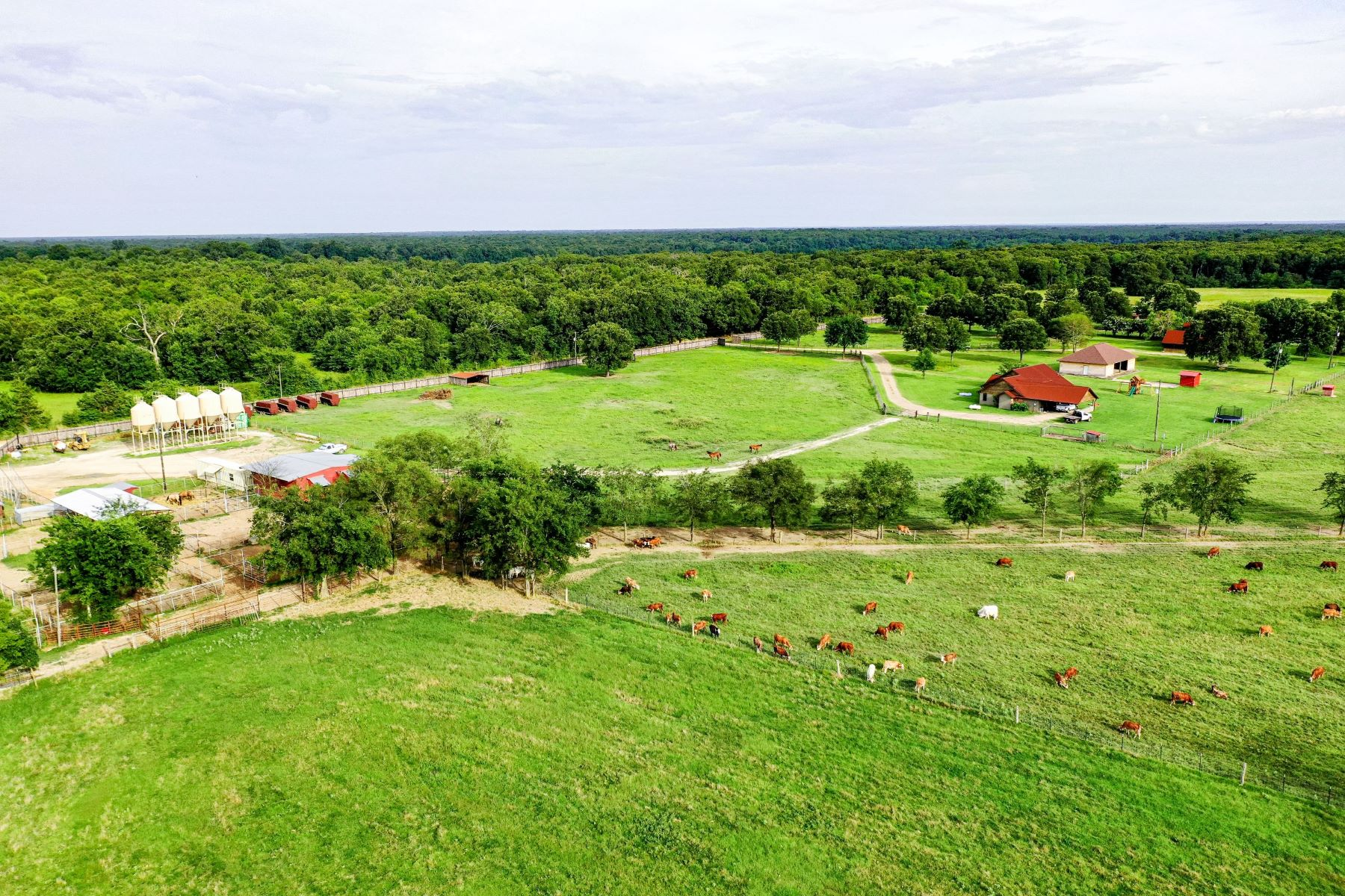 Farm / Ranch / Plantation for Active at Sulpher River Ranch 0001 FM 44 Avery, Texas 75554 United States