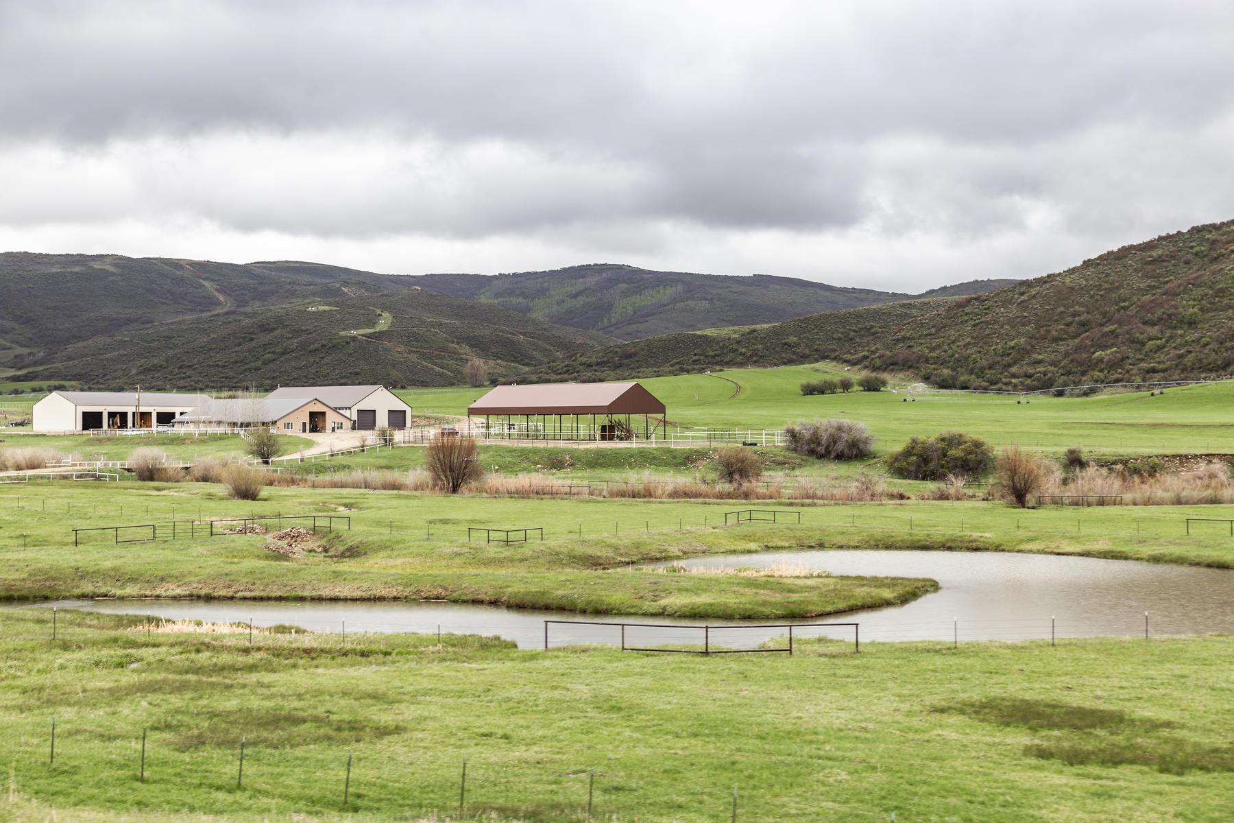 토지 용 매매 에 Spectacular River Ranch on Chalk Creek 3300 E Chalk Creek Road Coalville, 유타 84017 미국