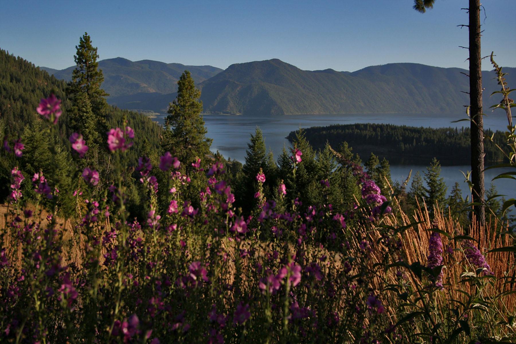 Terrain pour l Vente à Antler Point Estates B1, L2 Sasha Point, Hope, Idaho, 83836 États-Unis