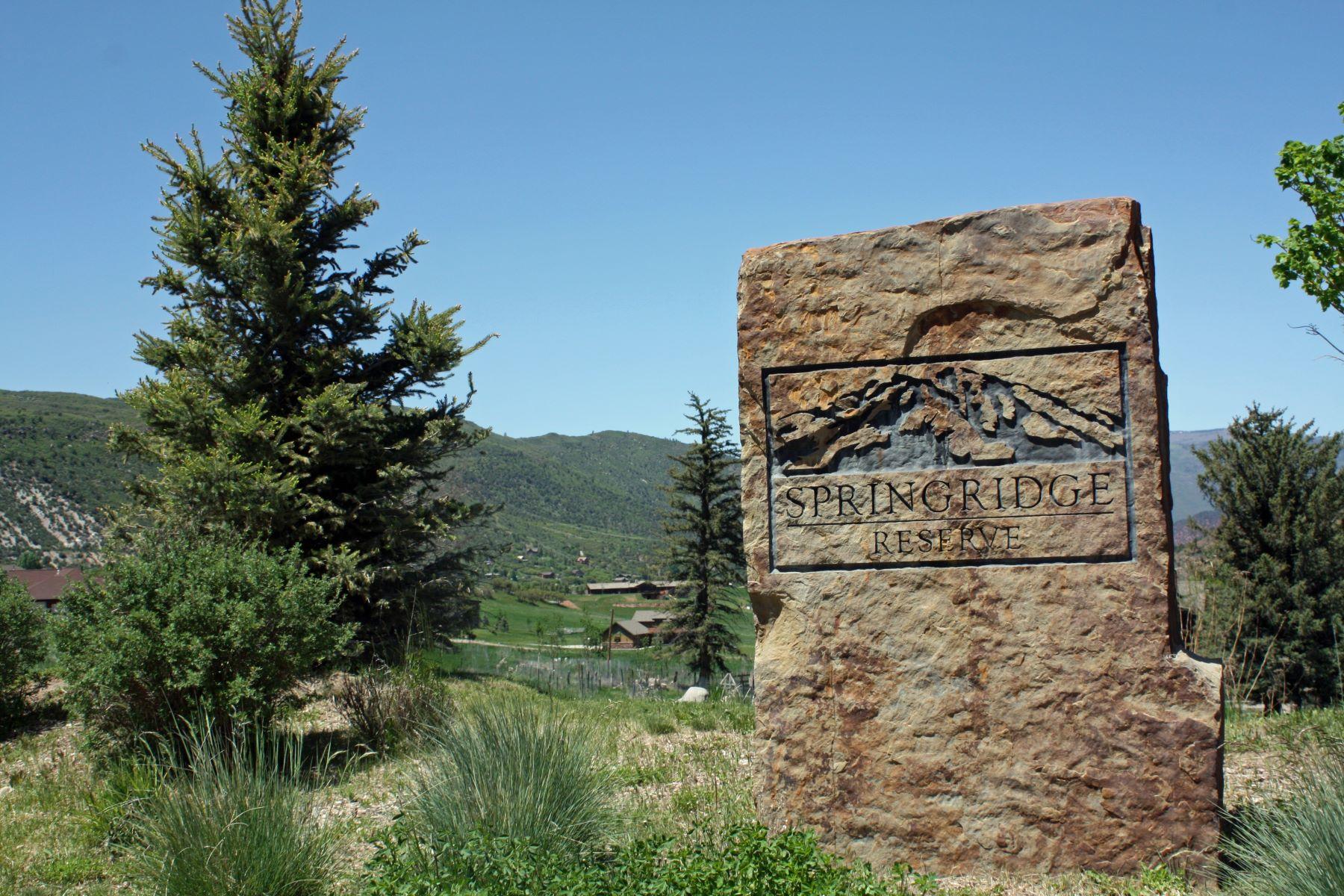 Land for Sale at Springridge Reserve Lot 44 1284 Hidden Valley Drive Glenwood Springs, Colorado 81601 United States