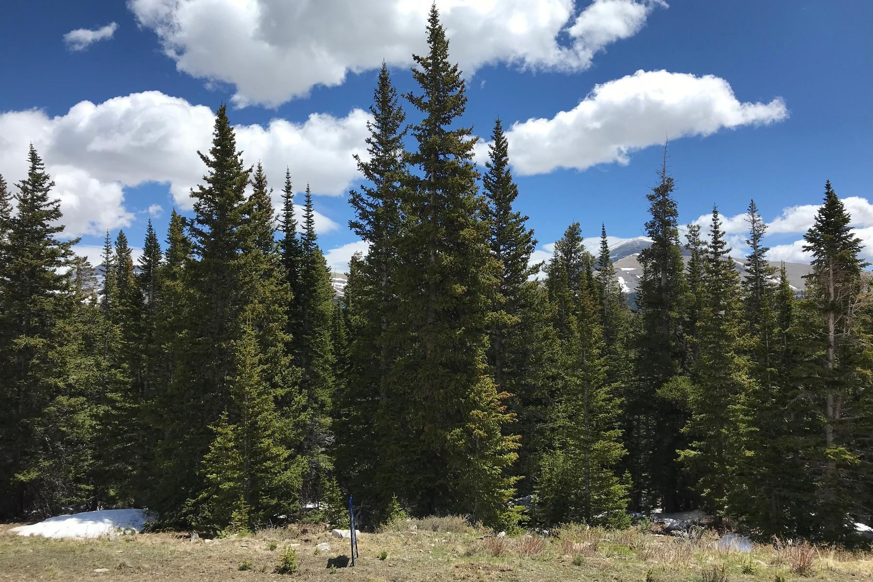 Land for Sale at Raw Land 209 Pyrite Place, Alma, Colorado 80420 United States