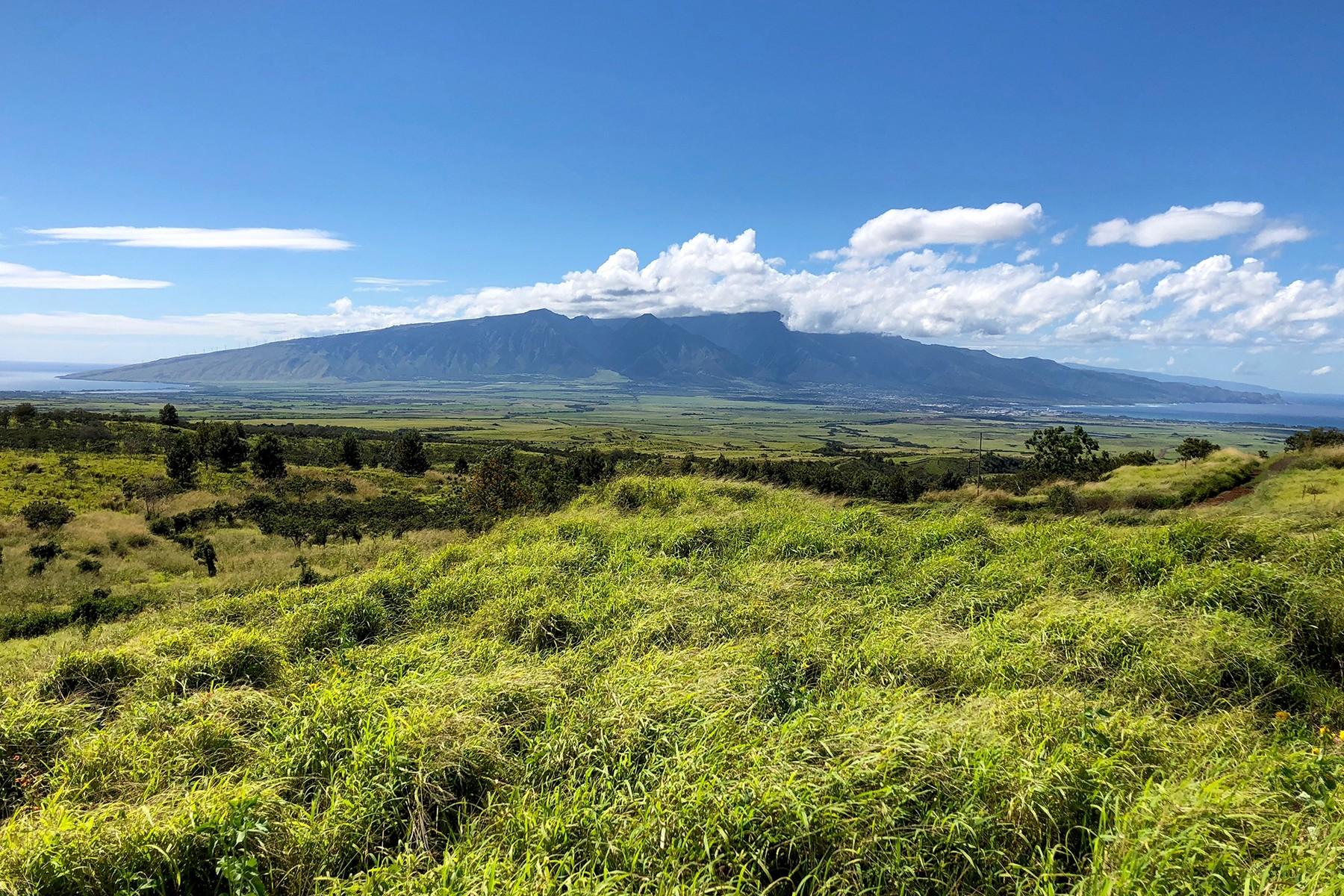 농장 / 목장 / 농장 용 매매 에 Kalialinui Ranch_ A 464 Acre Maui Treasure 0 Kula Highway, Kula, 하와이 96790 미국