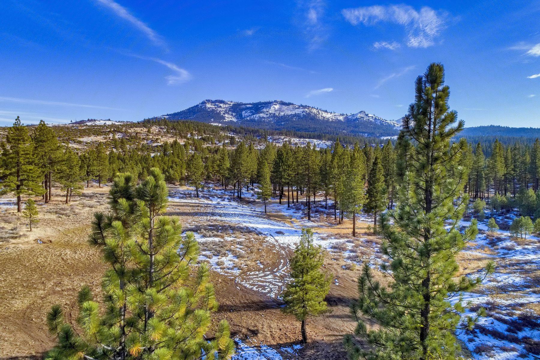 土地,用地 为 销售 在 000 Cedar Ridge Road 波托拉, 加利福尼亚州 96122 美国