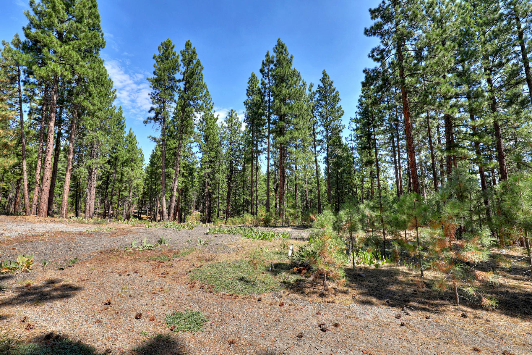 Land for Active at 16801 Robertson Rd , Truckee, CA 96161 16801 Robertson Rd Truckee, California 96161 United States