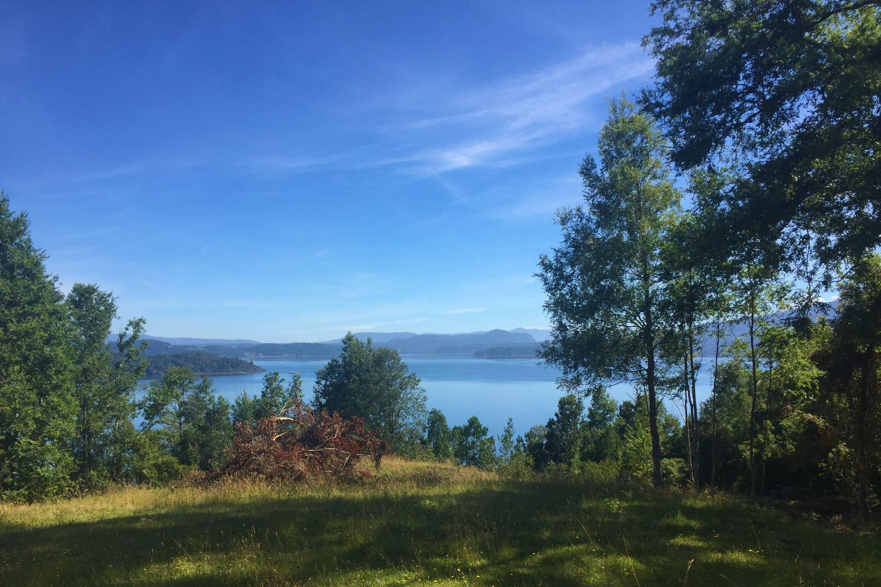 农场 / 牧场 / 种植园 为 销售 在 Chilean Landscape Beauty Lago Panguipulli Valdivia, Valdivia 智利