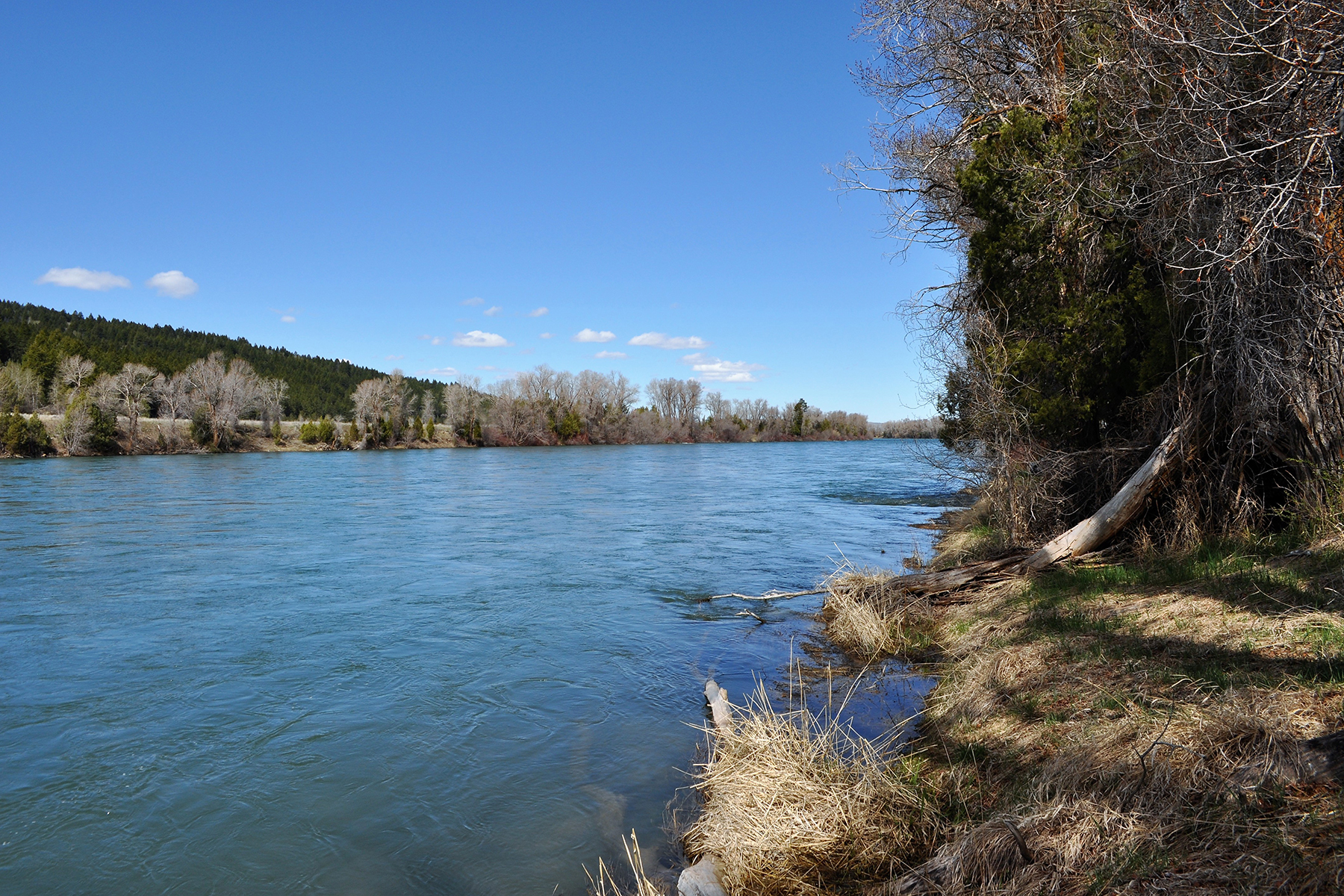 Land for Active at Southfork of the Snake River Frontage TBD Raven Rd Irwin, Idaho 83428 United States