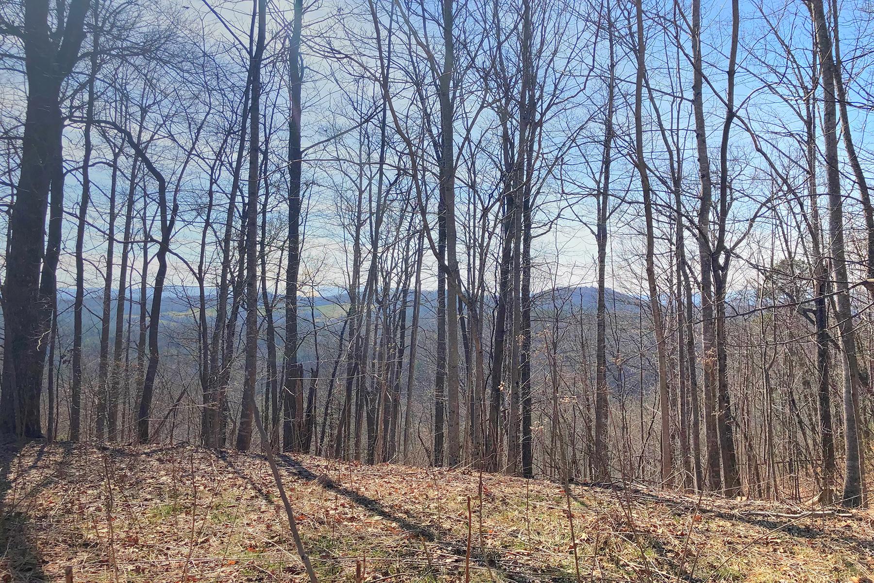 Land for Sale at OLETA FALLS 467 Overlook Park Dr , 77 Hendersonville, North Carolina 28792 United States