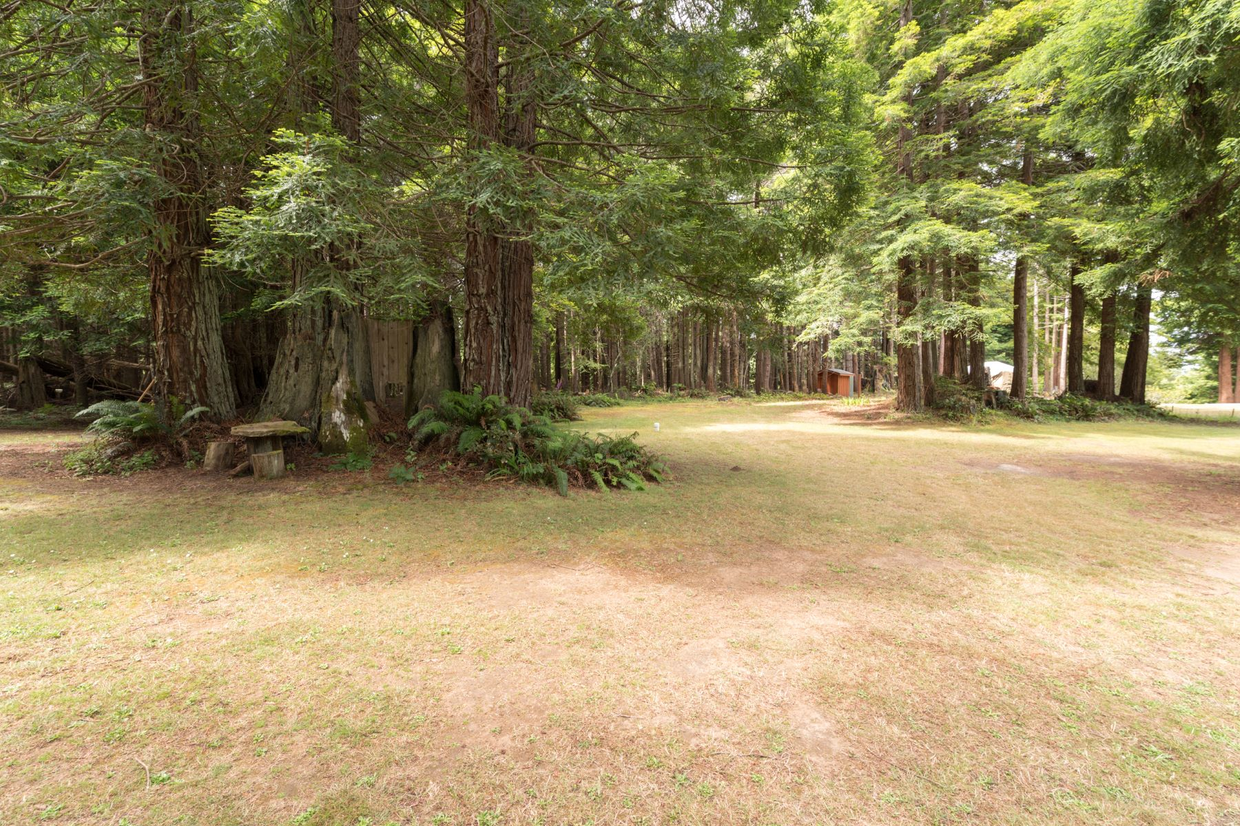 Additional photo for property listing at Coastal Dream 24560 Jimmie Lane Fort Bragg, 加利福尼亚州 95437 美国