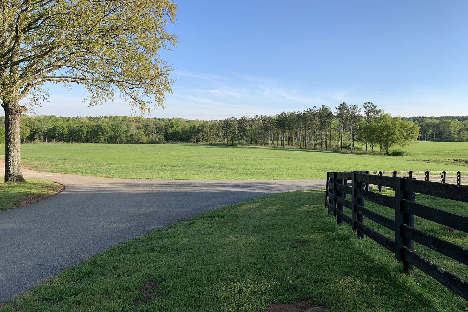 Land for Sale at Beautiful, Gentle, Rolling 18 +/- Acre Site Attached to Bear Creek Farm. 0 Bear Creek Road Lot 1 Moreland, Georgia 30259 United States