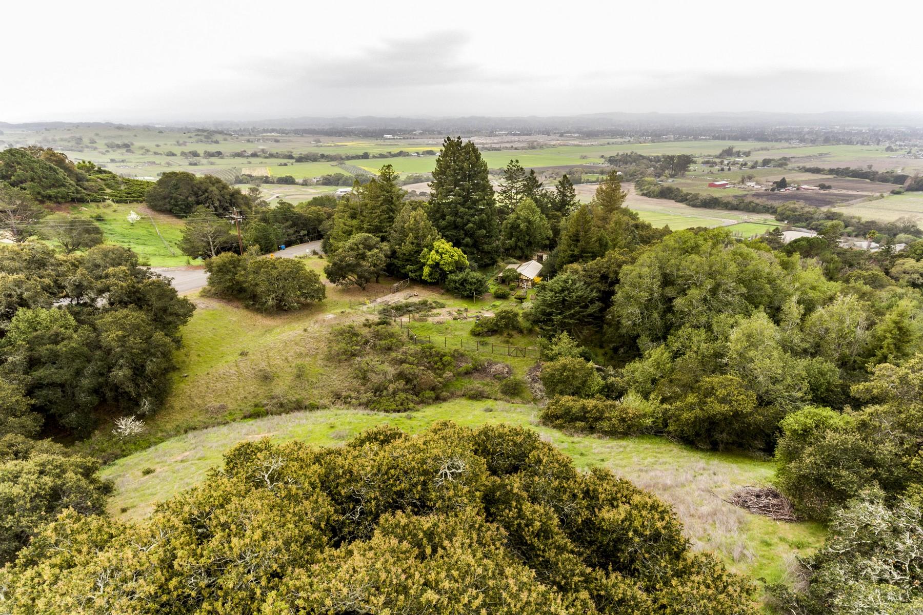 Single Family Homes para Venda às Gardener's Oasis with Views 5577 Inverness Ave, Santa Rosa, Califórnia 95404 Estados Unidos