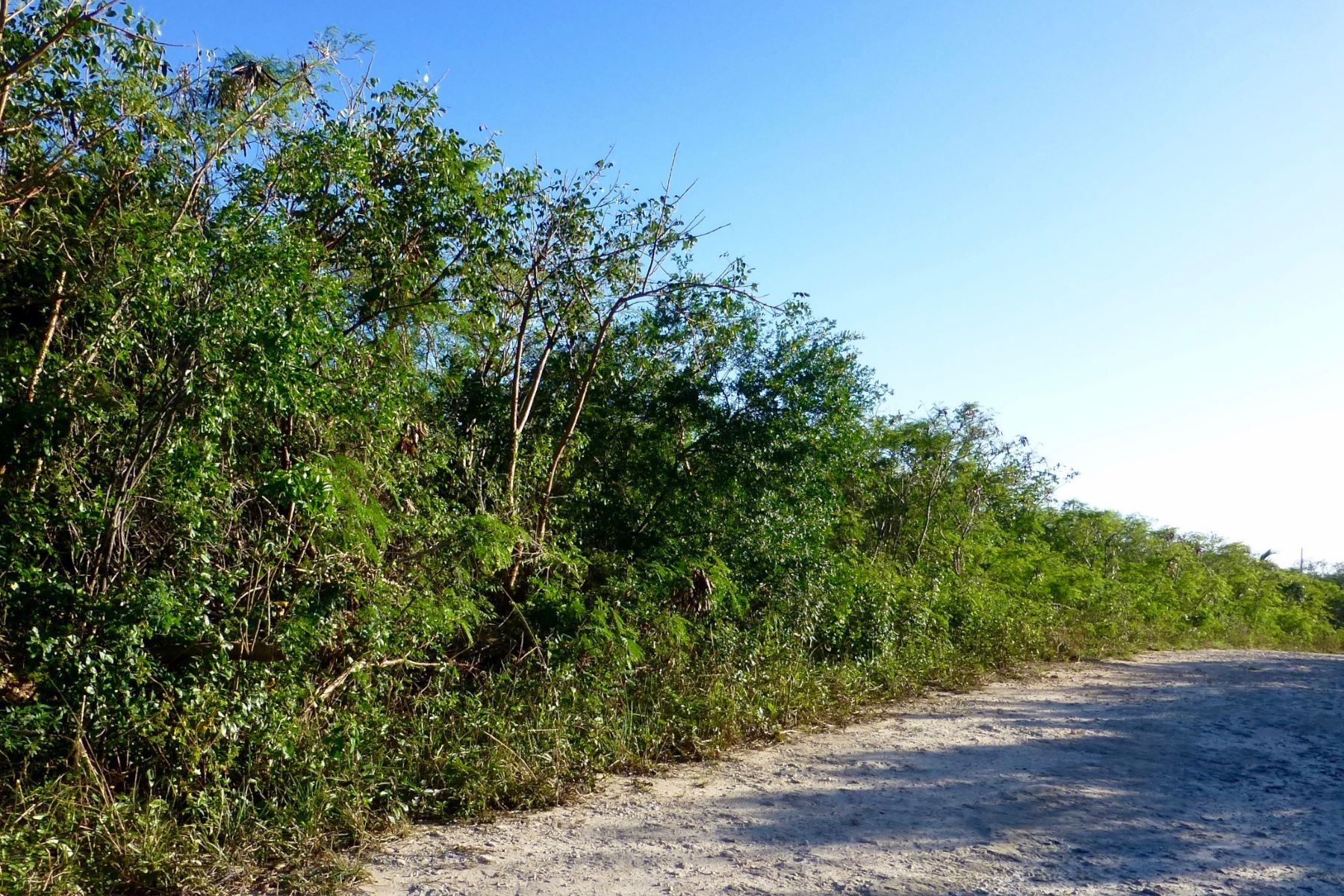 Additional photo for property listing at Lot 8, Block 47, Section E Eleuthera Island Shores, Gregory Town, Eleuthera Bahamas