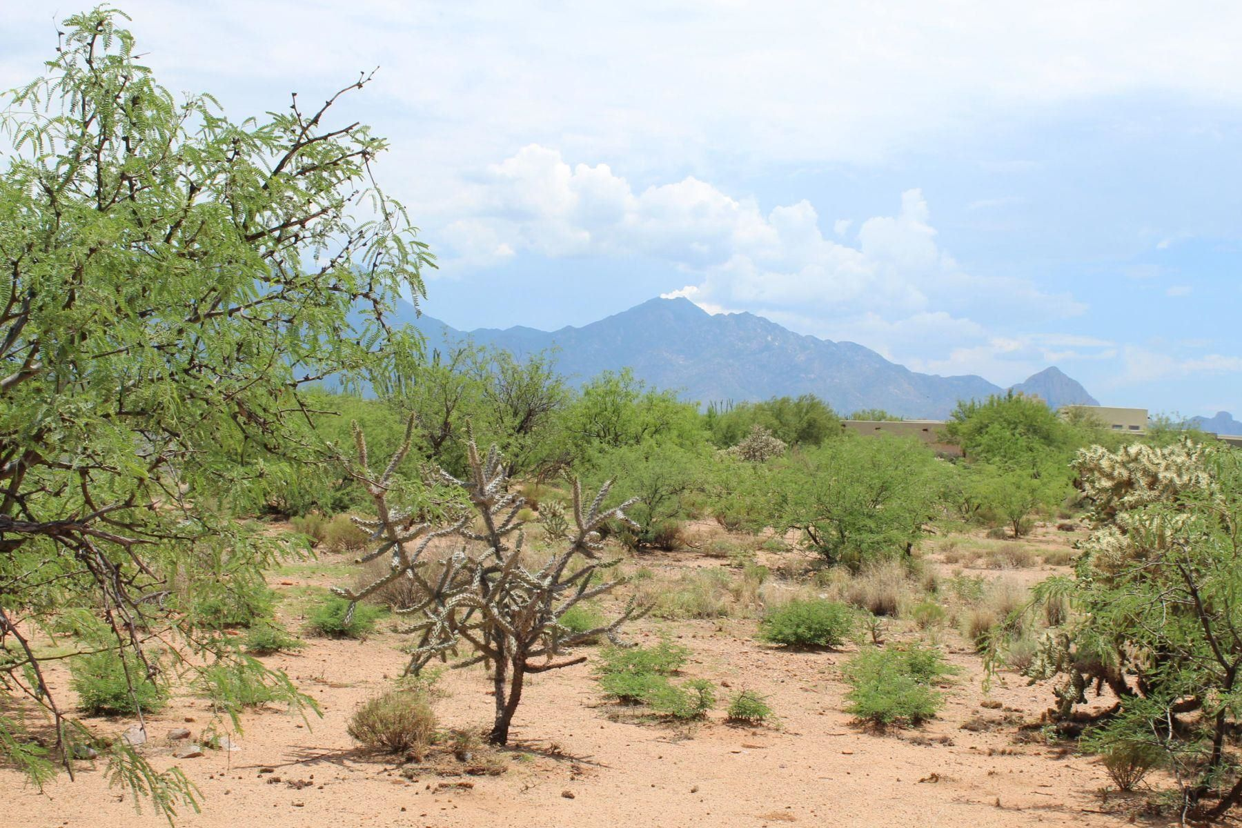 Land for Active at Beautiful 1.89 Acre Home Site 3016 S Corte Amarilla Green Valley, Arizona 85614 United States