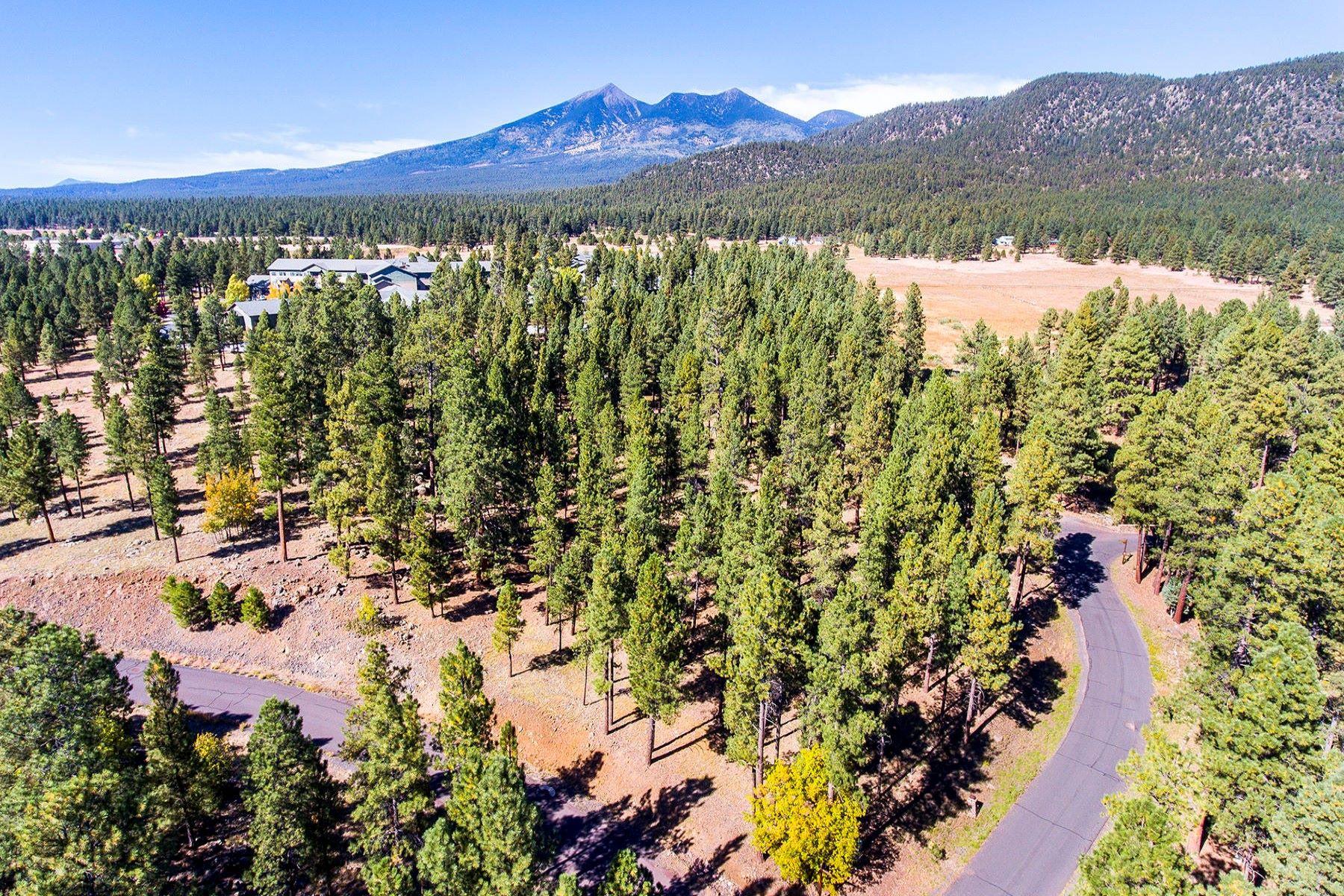 土地 為 出售 在 Stunning Parcel in Coyote Springs 3001 N Creekside Dr, Flagstaff, 亞利桑那州, 86001 美國