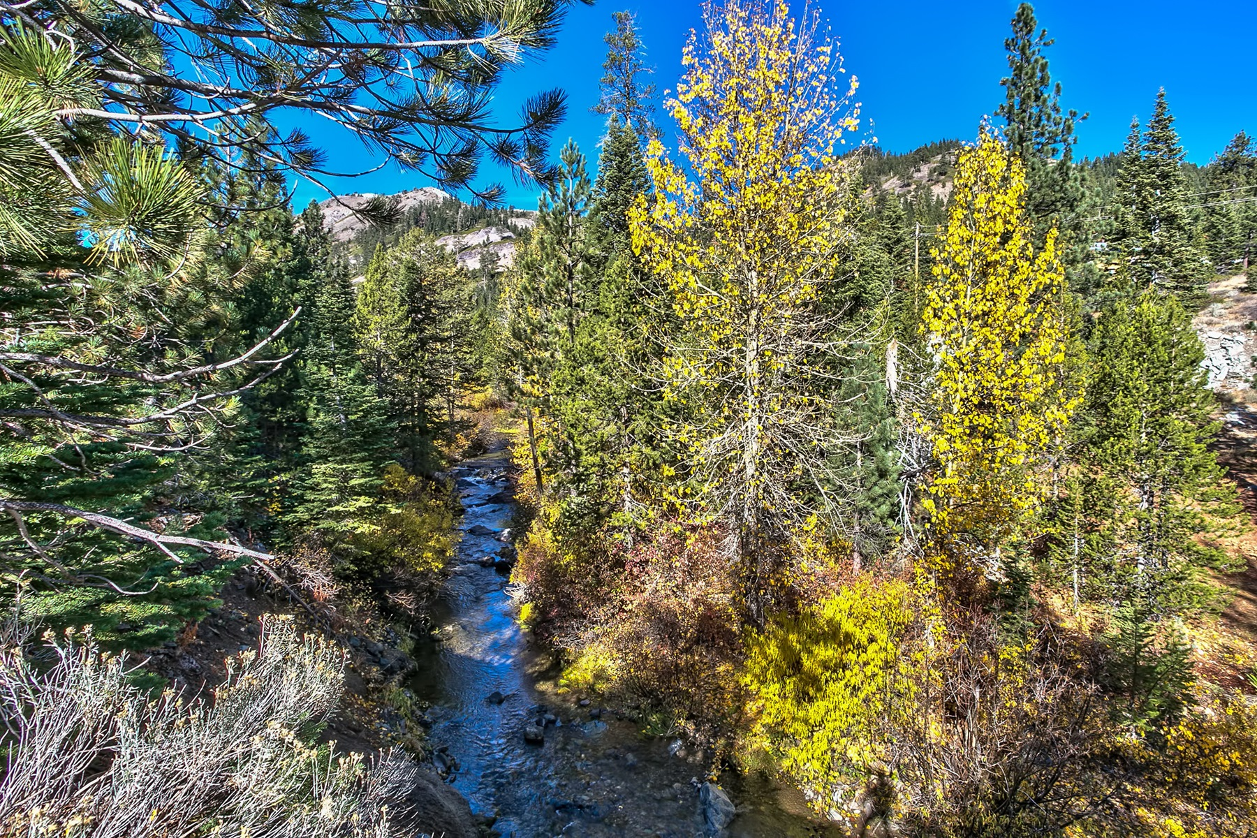 Additional photo for property listing at 1432 Mineral Springs Trail Alpine Meadows, California 96146 Estados Unidos