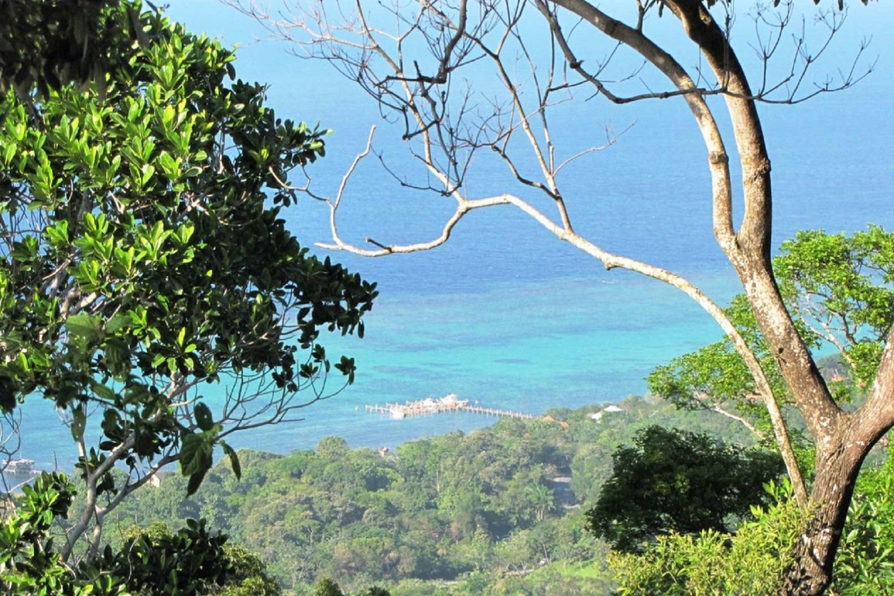 Terrain pour l Vente à La Selva Development Opportunity Sandy Bay Roatan, Bay Islands 34101 Honduras