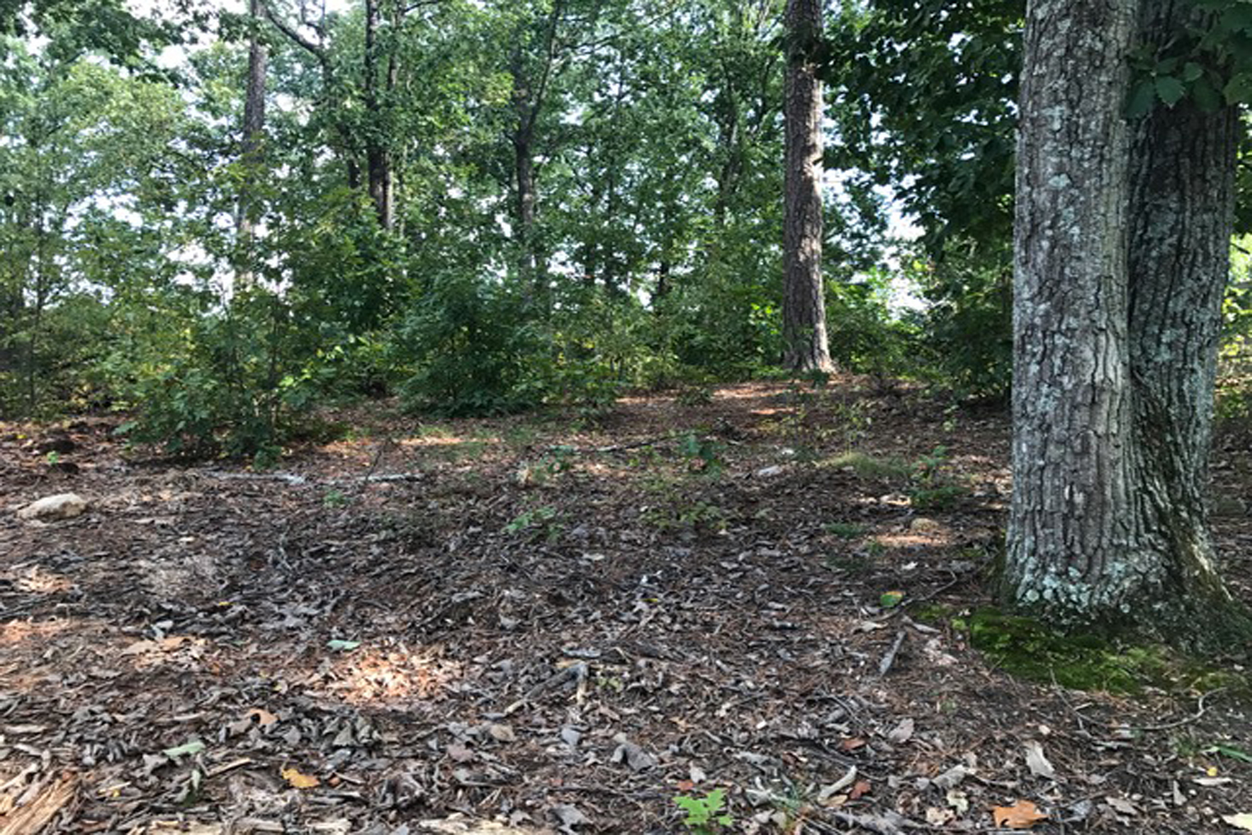 Land for Sale at Sandy Springs Premier Lot 5745 Powers Ferry Road Sandy Springs, Georgia 30327 United States