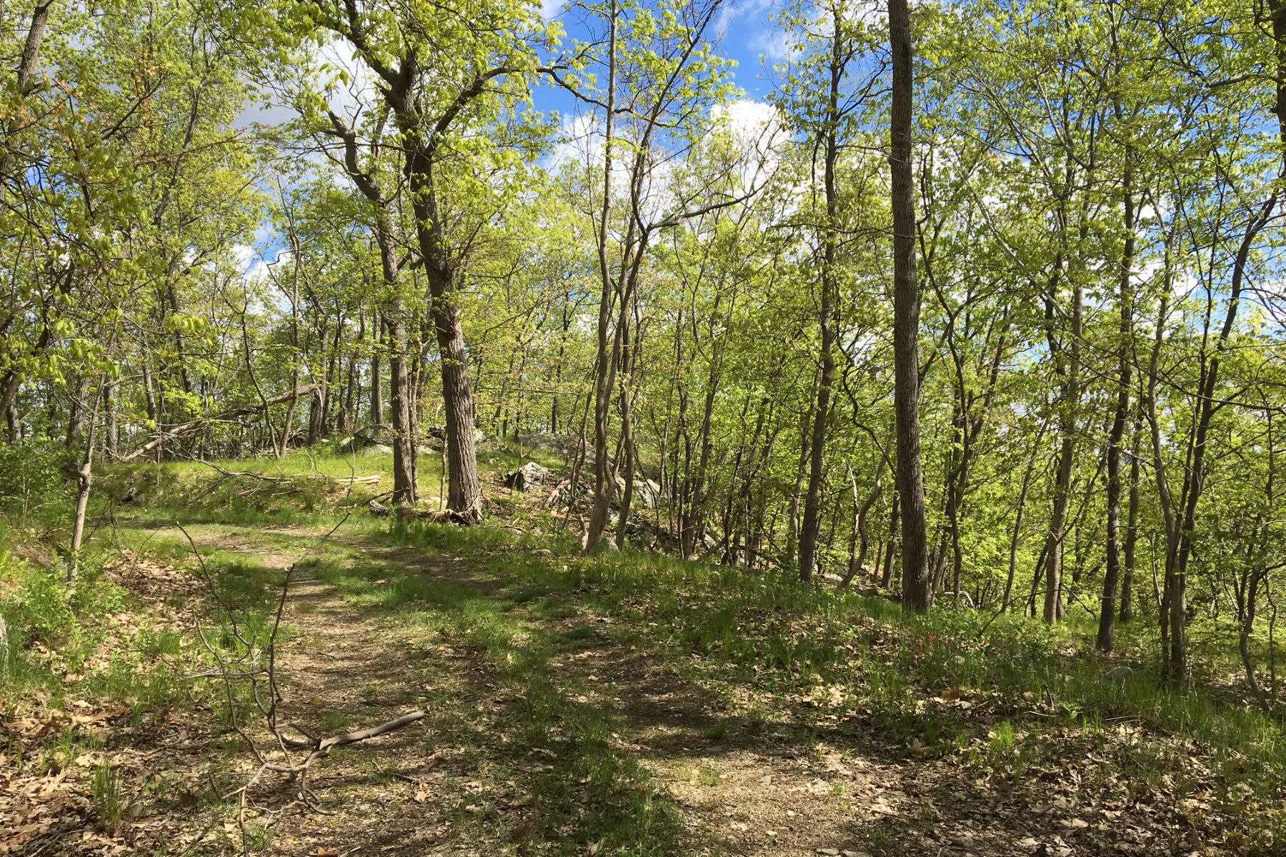 Land for Sale at Mountain Wood Pine Hill Road Tuxedo Park, New York, 10987 United States