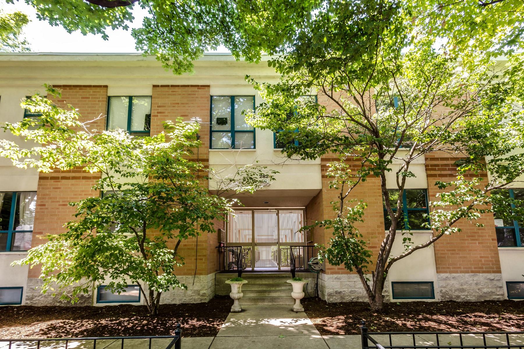 Maison en rangée pour l Vente à Incredibly Renovated Townhome 2820 N Greenview Street Unit G Chicago, Illinois, 60657 États-Unis