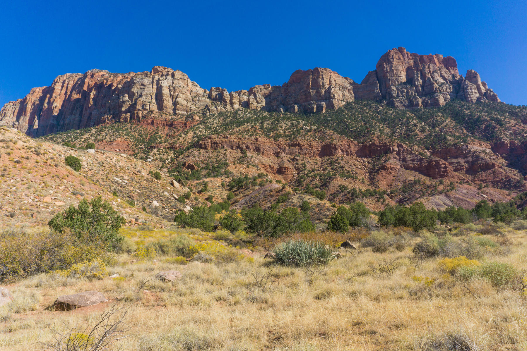 Additional photo for property listing at Private Lot in Zion Canyon Lot 23 Canyon Cove Circle Springdale, 犹他州 84767 美国