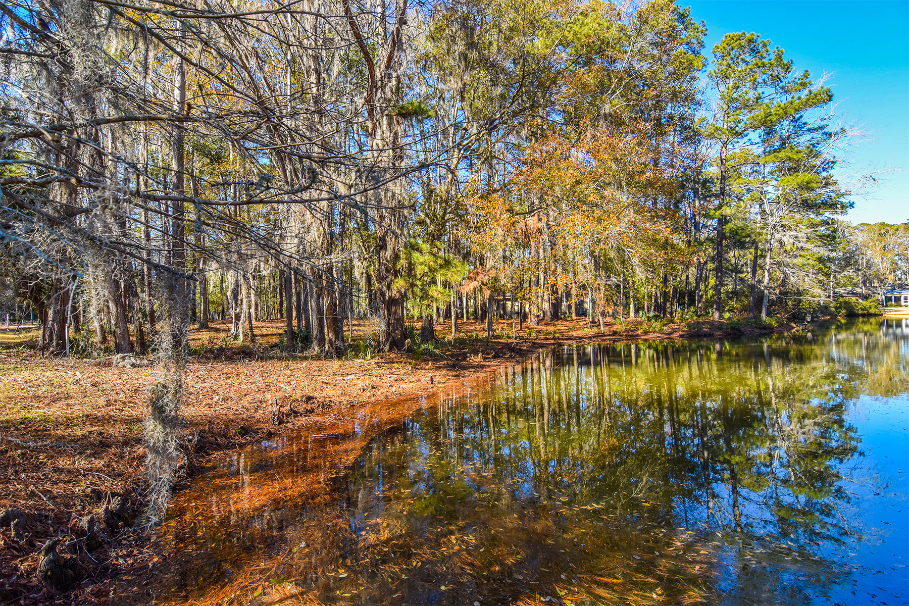 Land for Sale at Lot 1 Makepeace Road, Pawleys Island, SC 29585 Lot 1 Makepeace Road Pawleys Island, South Carolina 29585 United States