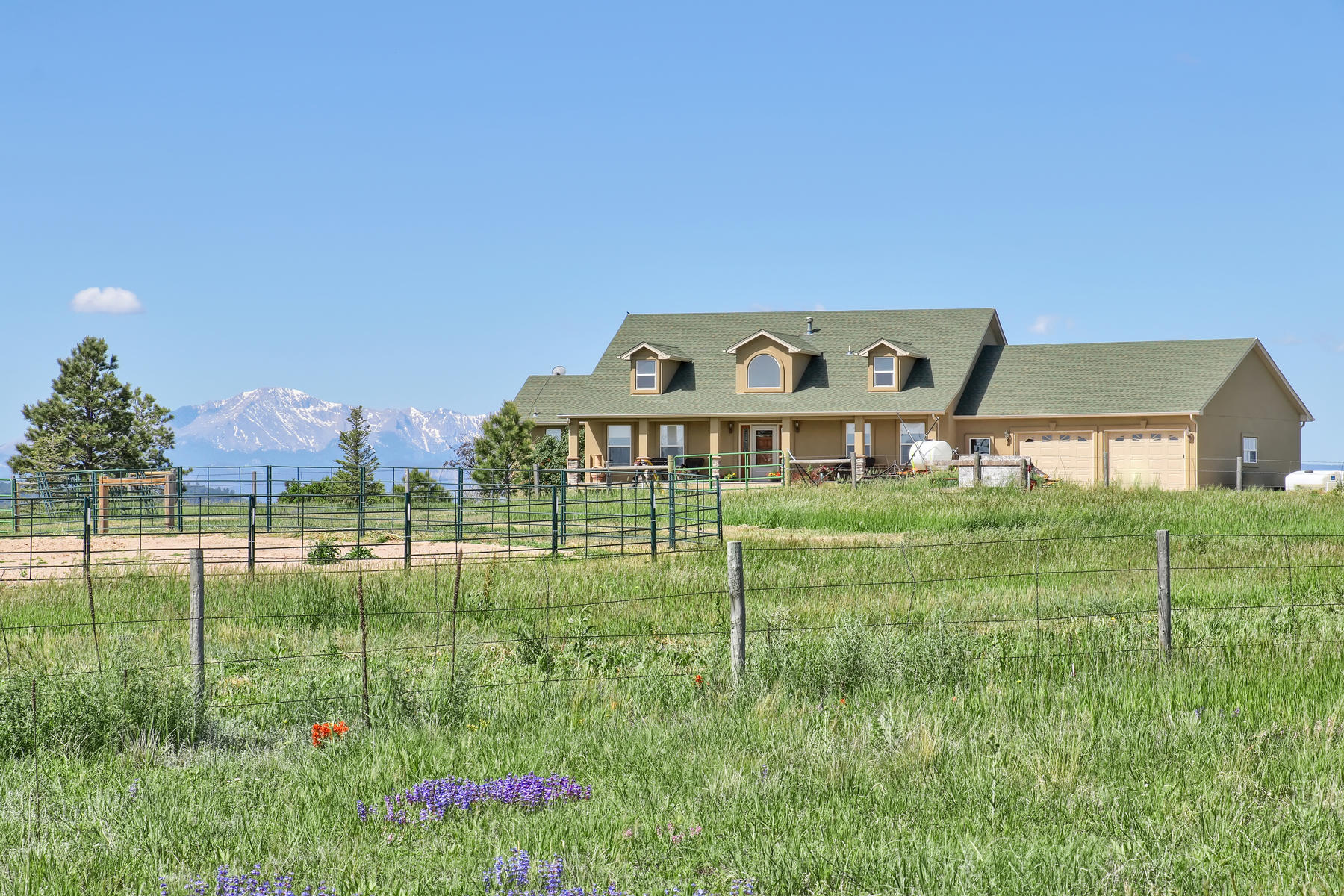 Single Family Homes for Active at Enjoy the Quiet Life with Pikes Peak Views 9429 S East Cherry Creek Road Franktown, Colorado 80116 United States