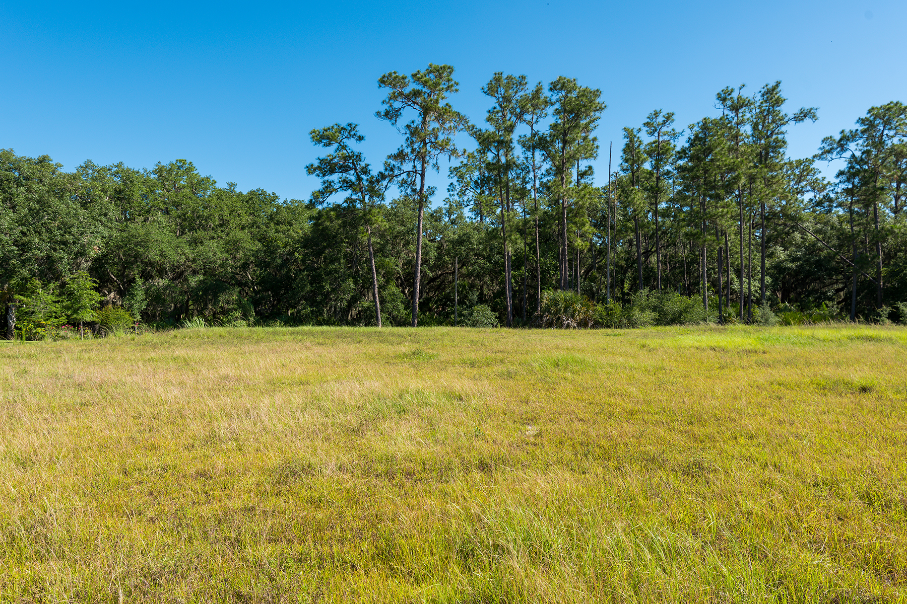 Land for Sale at THE CONCESSION 19439 Beacon Park Pl Pl, Bradenton, Florida 34202 United States