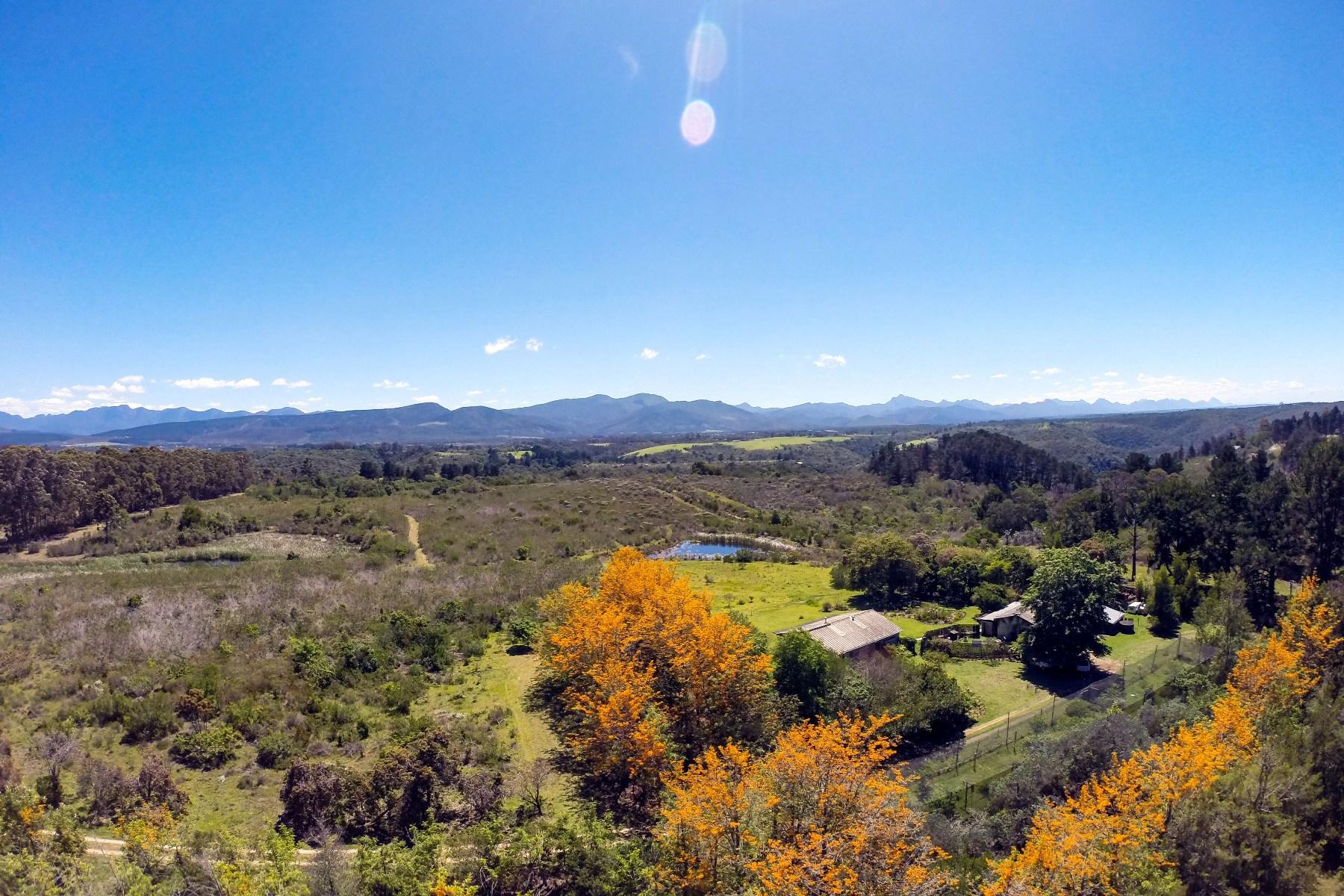 農場/牧場 / プランテーション のために 売買 アット Smallholding above Keurbooms Plettenberg Bay, 西ケープ, 6600 南アフリカ