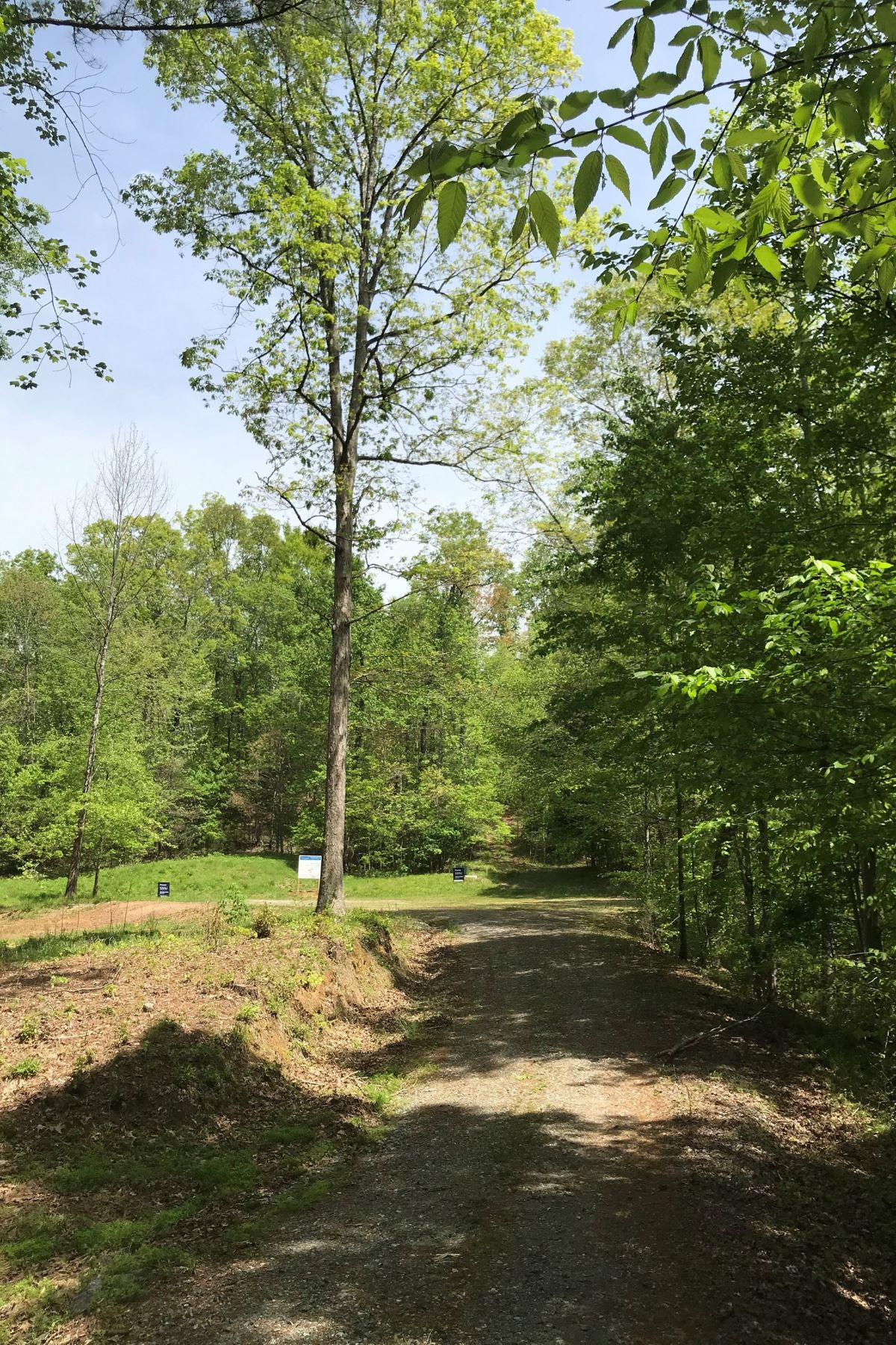 Land for Sale at Lot #69 Ash Creek Lane #69 Ash Creek Lane Rutherfordton, North Carolina 28139 United States