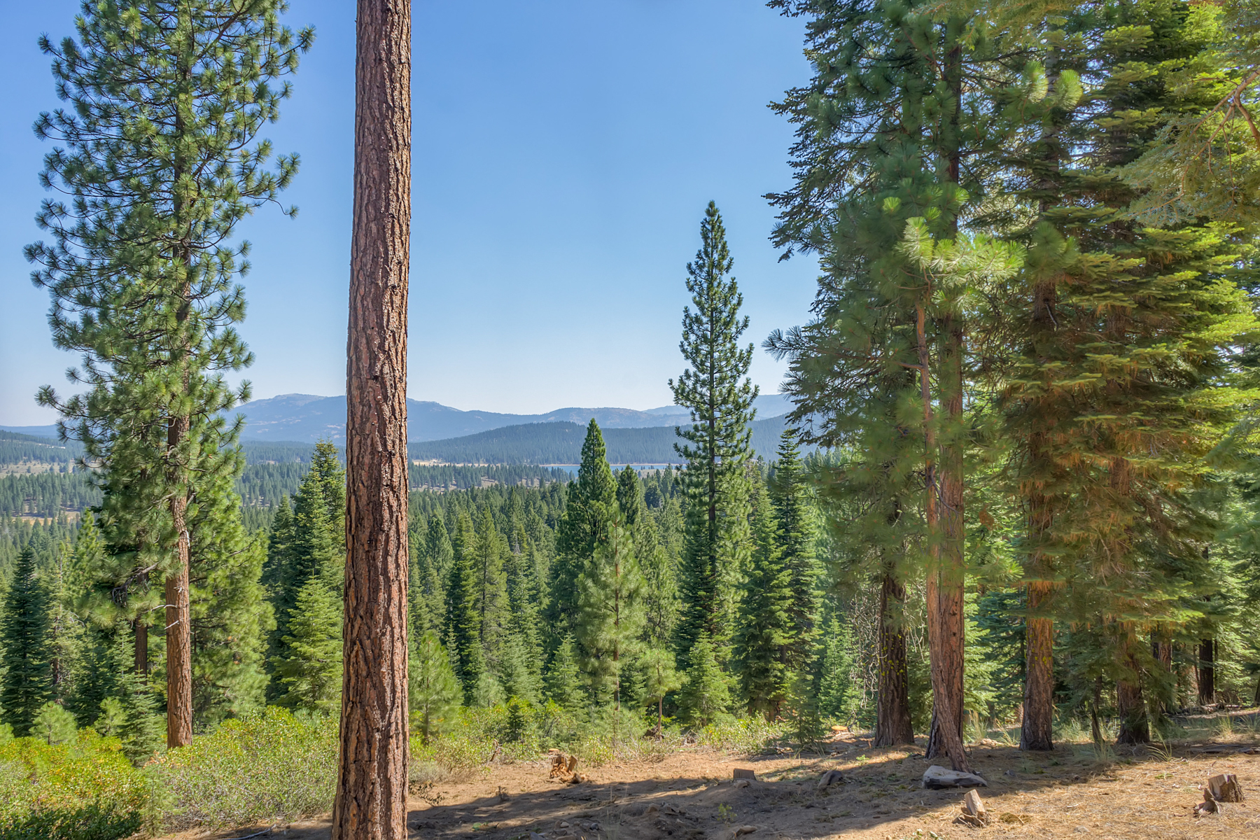 Additional photo for property listing at 12431 Stony Ridge Court Truckee, California 96162 12431 Stoney Ridge Truckee, California 96161 United States