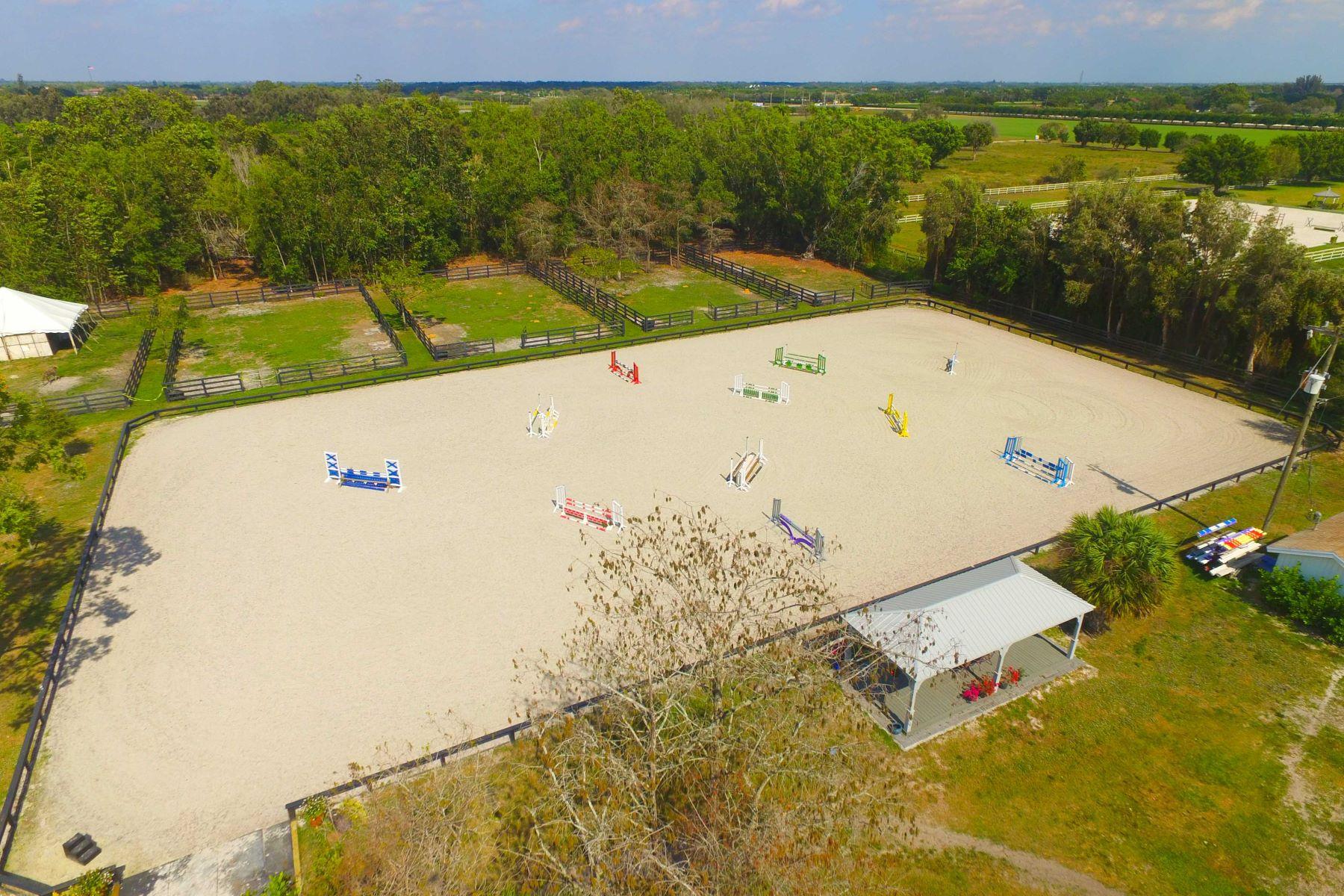 Ферма / ранчо / плантация для того Продажа на Palm Glade Reserves 13305 Indian Mound Wellington, Флорида, 33414 Соединенные Штаты