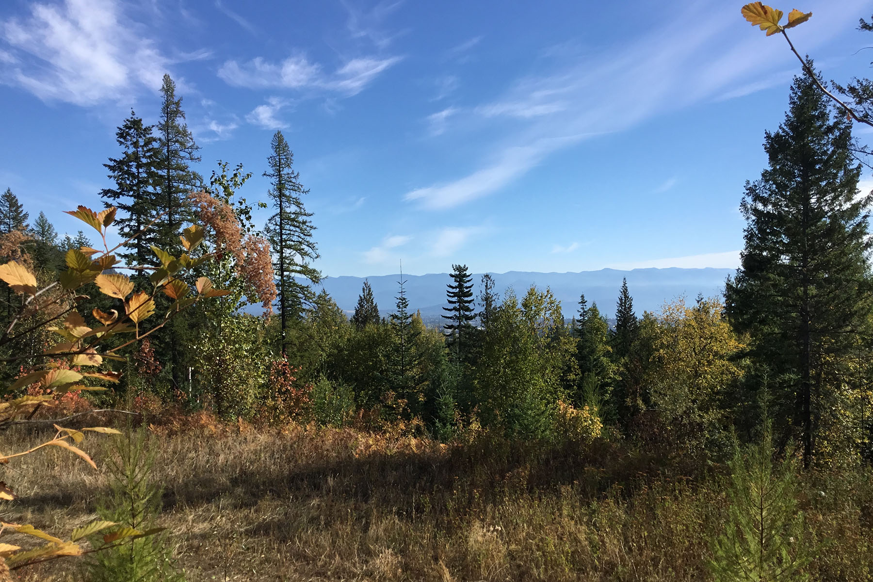 Lake Pend Oreille View Parcel NNA Hidden Spring Rd Sandpoint, Idaho 83864 United States