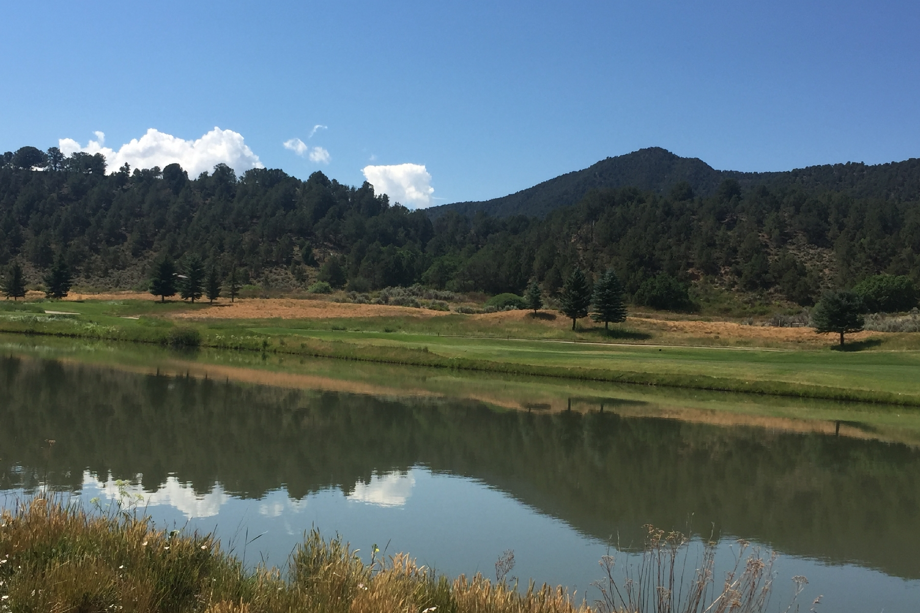 Land for Sale at Overlooking the Pond & 2nd Fairway 205 Golden Bear Drive Carbondale, Colorado 81623 United States