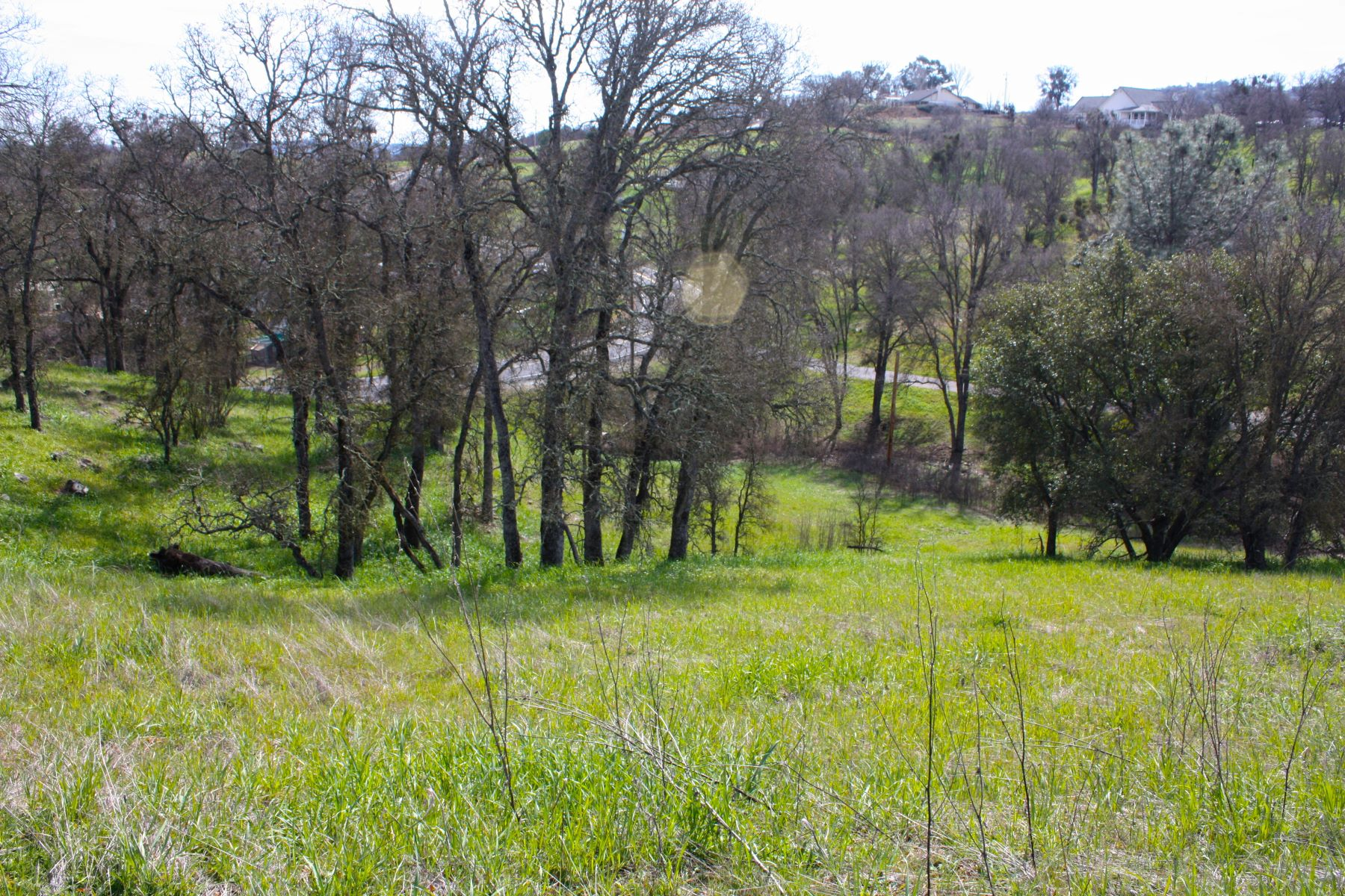 Terreno per Vendita alle ore Rolling Hill View Lot 1795 Choctaw Road Copperopolis, California 95228 Stati Uniti